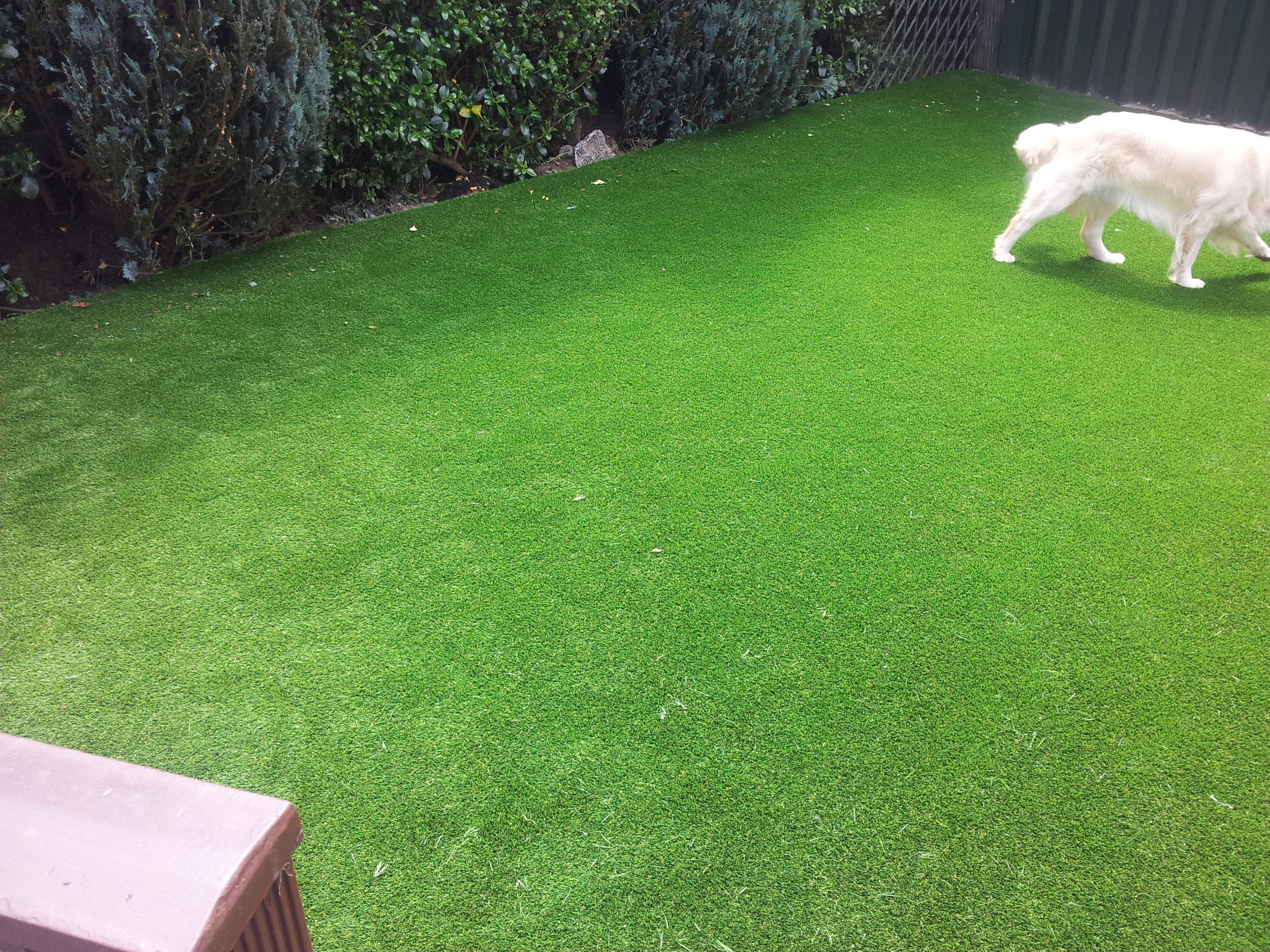 TigerTurf artificial lawns for dogs
