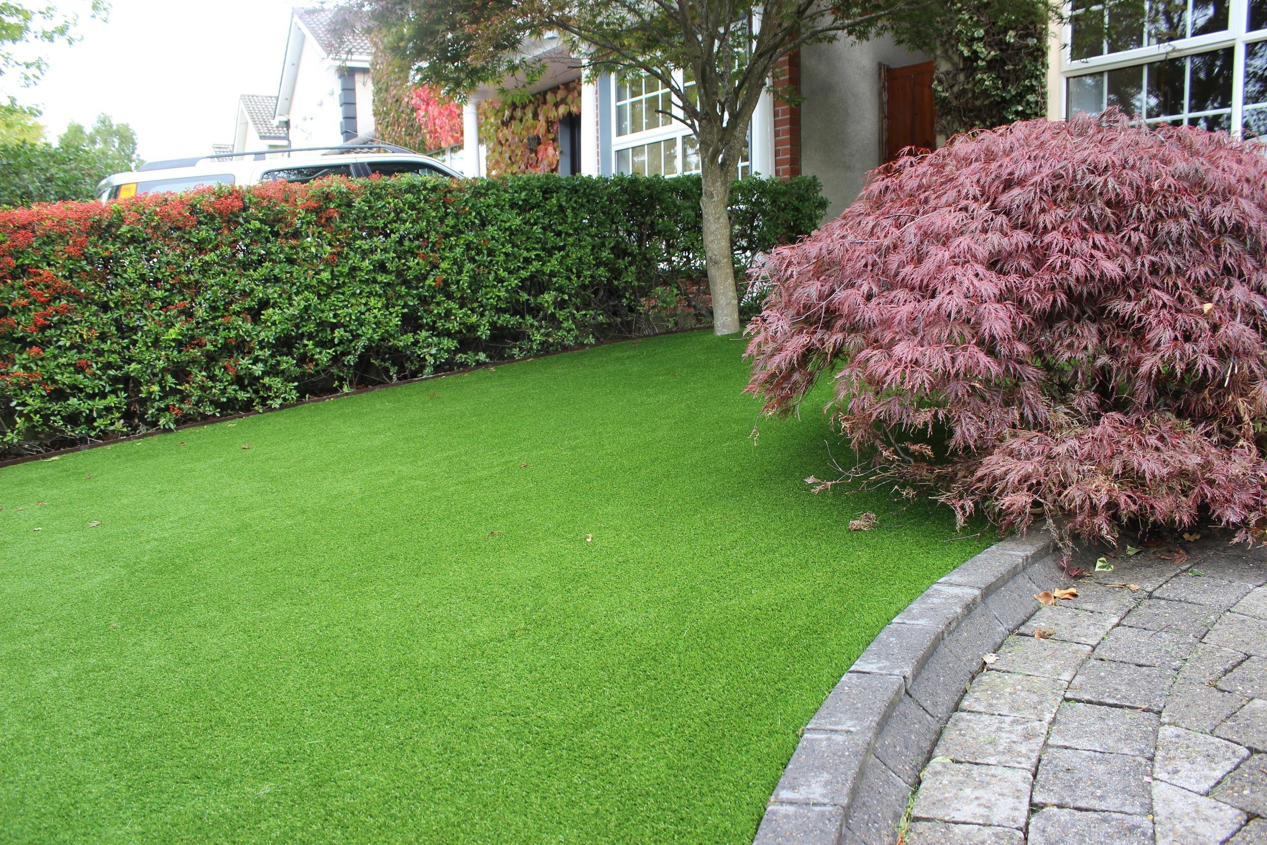 grass lawn front garden.jpg
