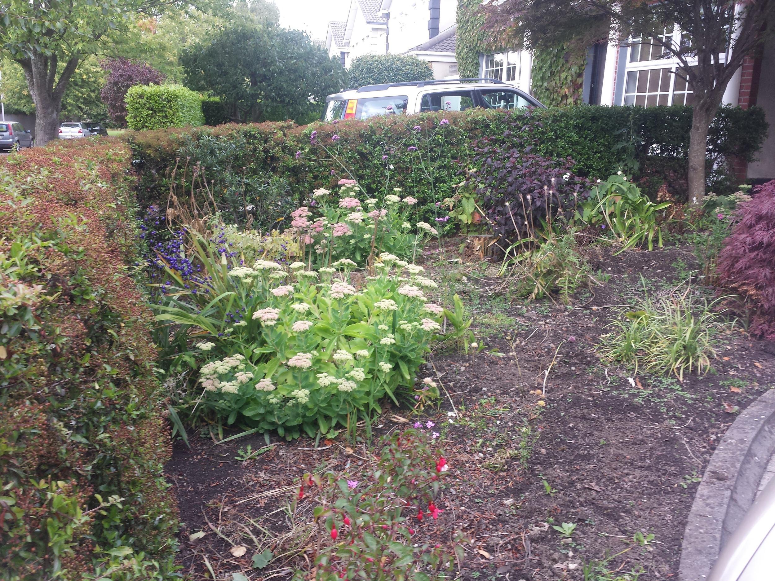 front garden lawn area before artificial grass installation, Foxrock, Dublin, Ireland.jpg