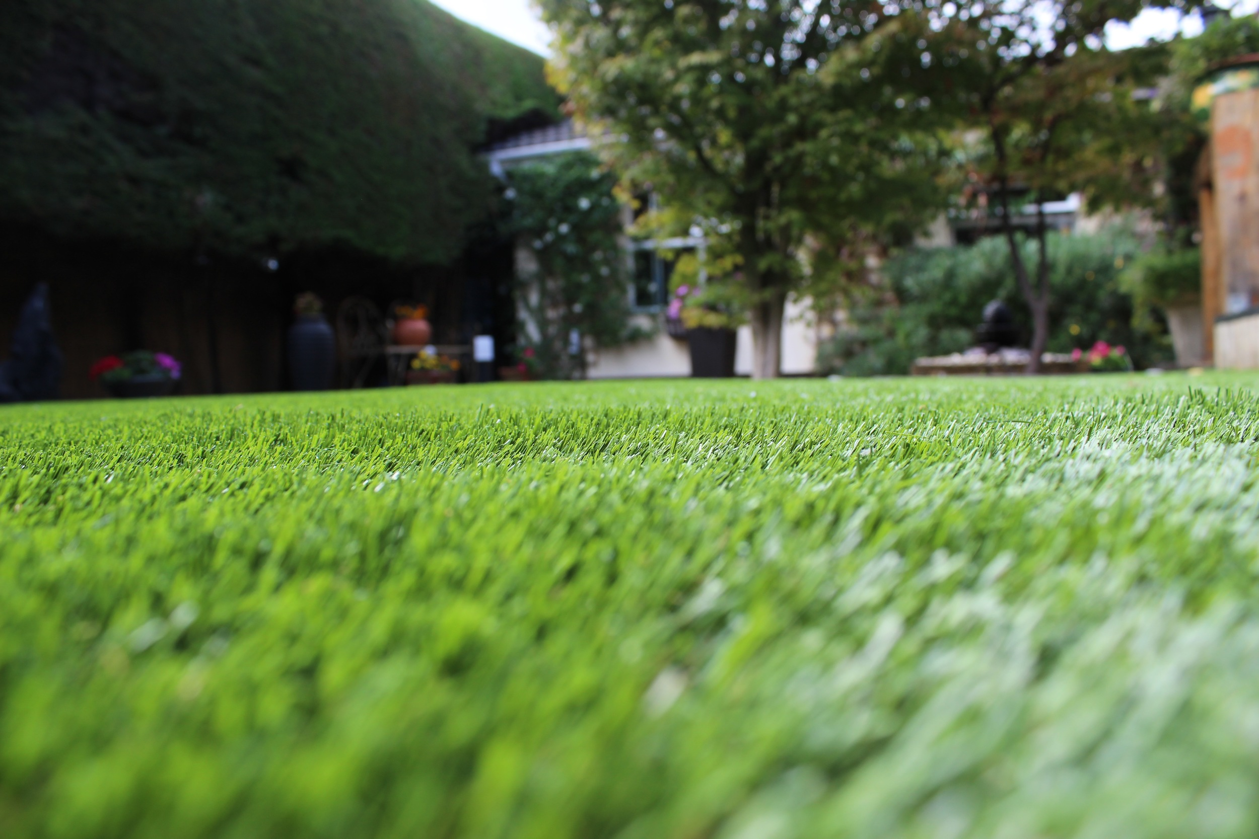 artificial grass turf in Dublin Garden.jpg