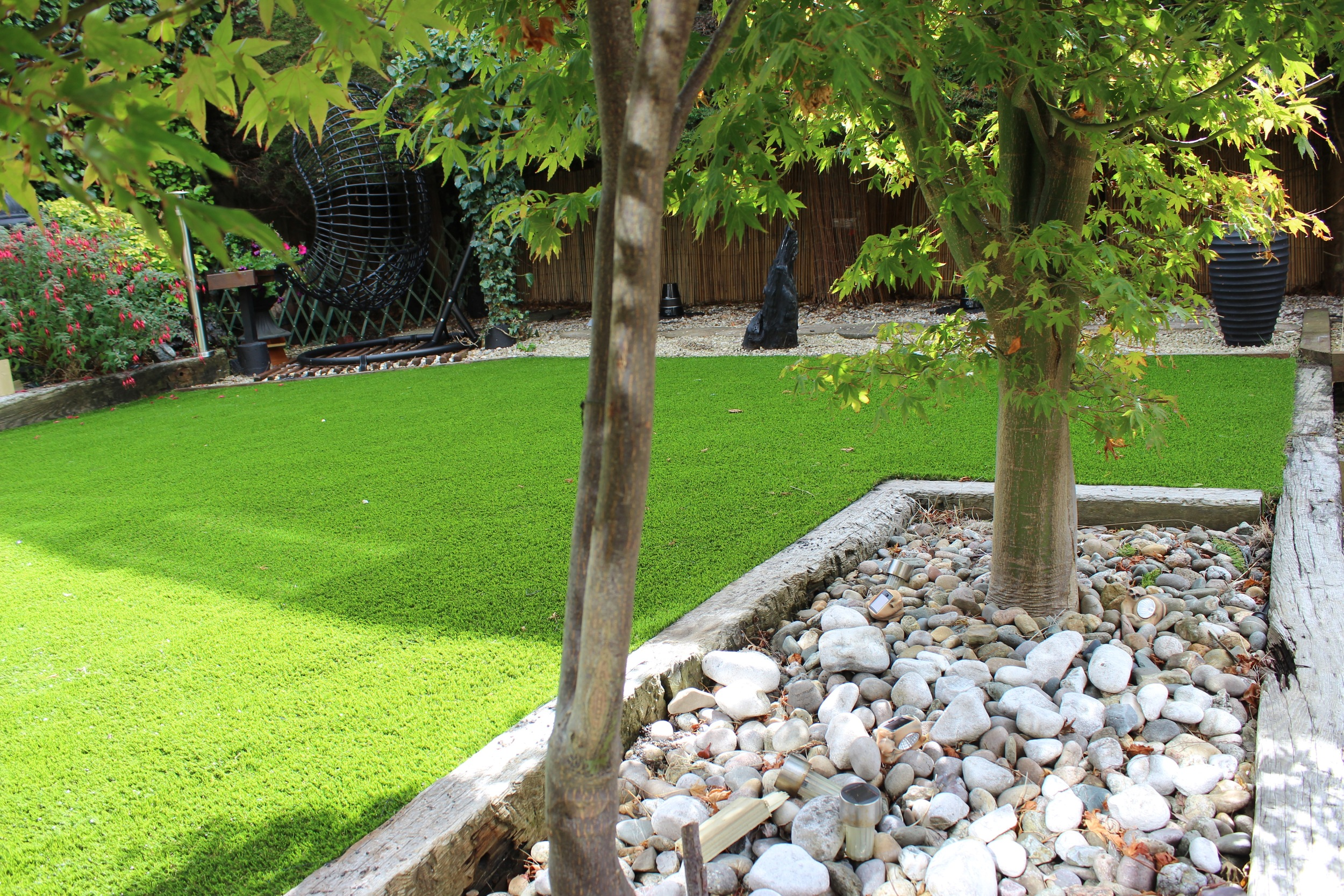 beautiful lawn throught the maple trees.jpg