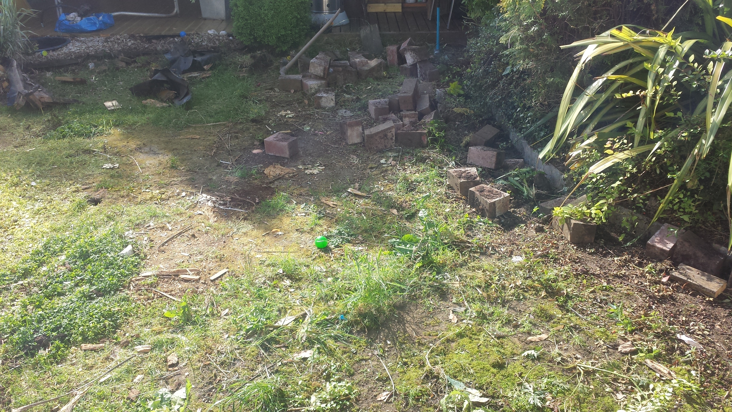 lawn area before new artificial turf installation.jpg