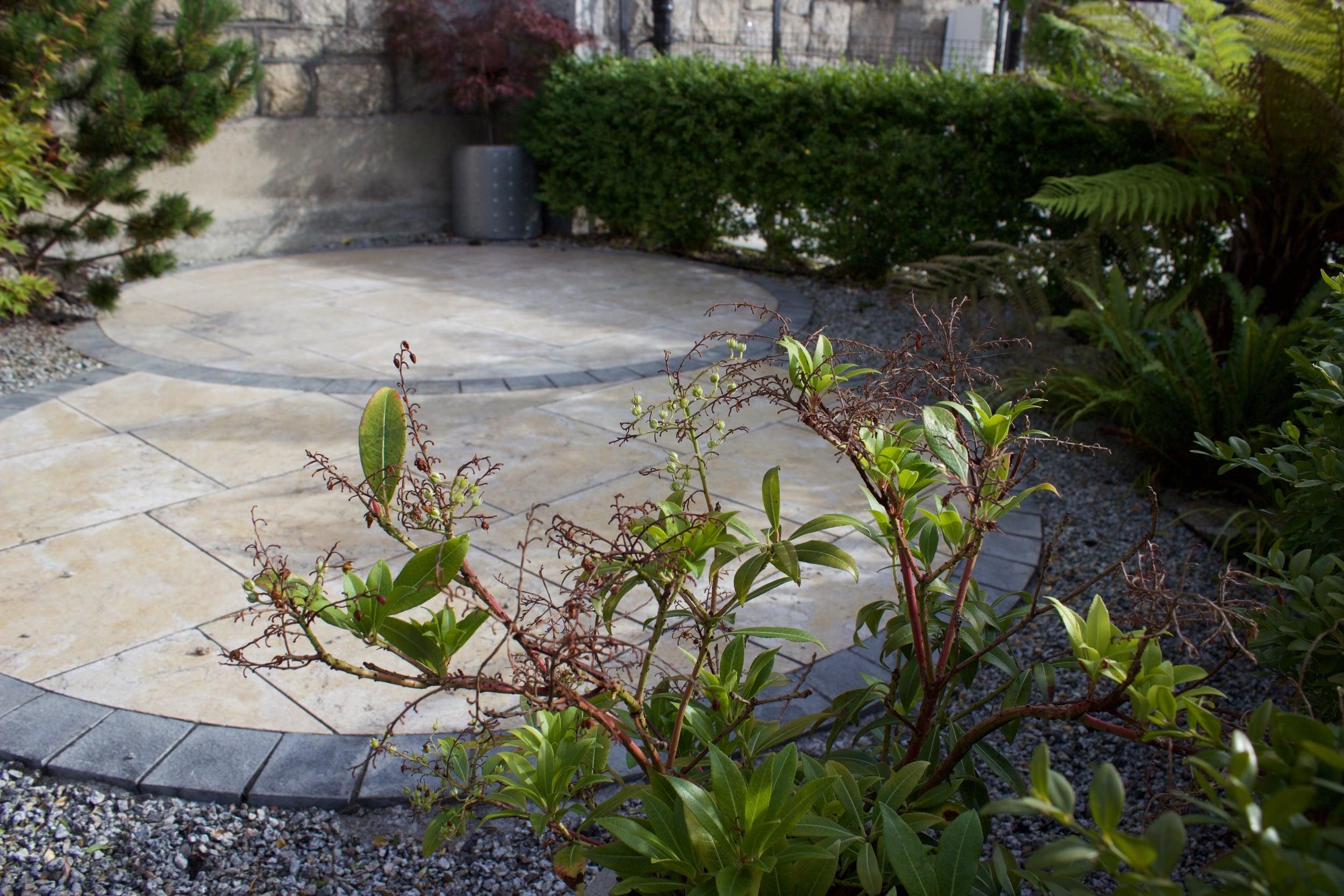 urban garden design.jpg