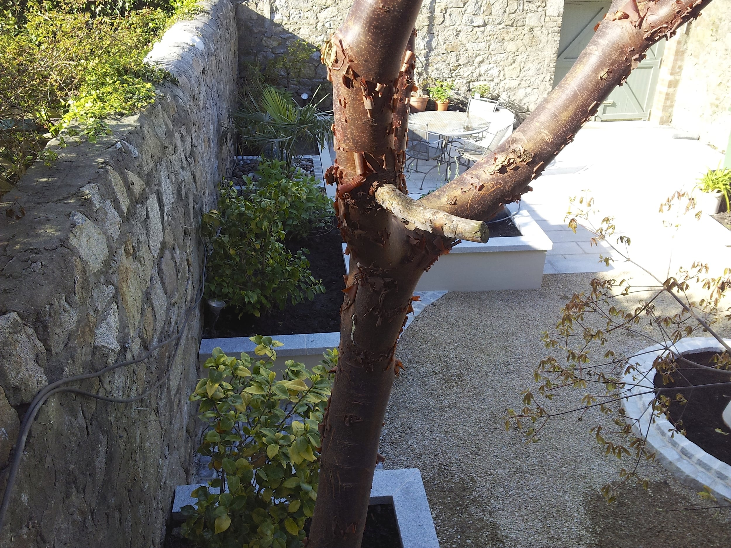 Formality gardens glasthule.jpg