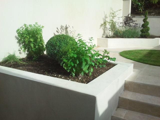 urban garden dublin.jpg