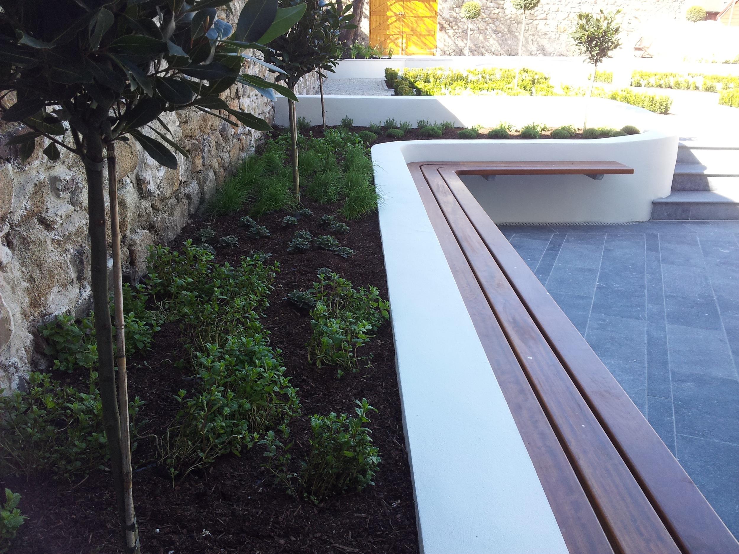 contemporary garden design.jpg