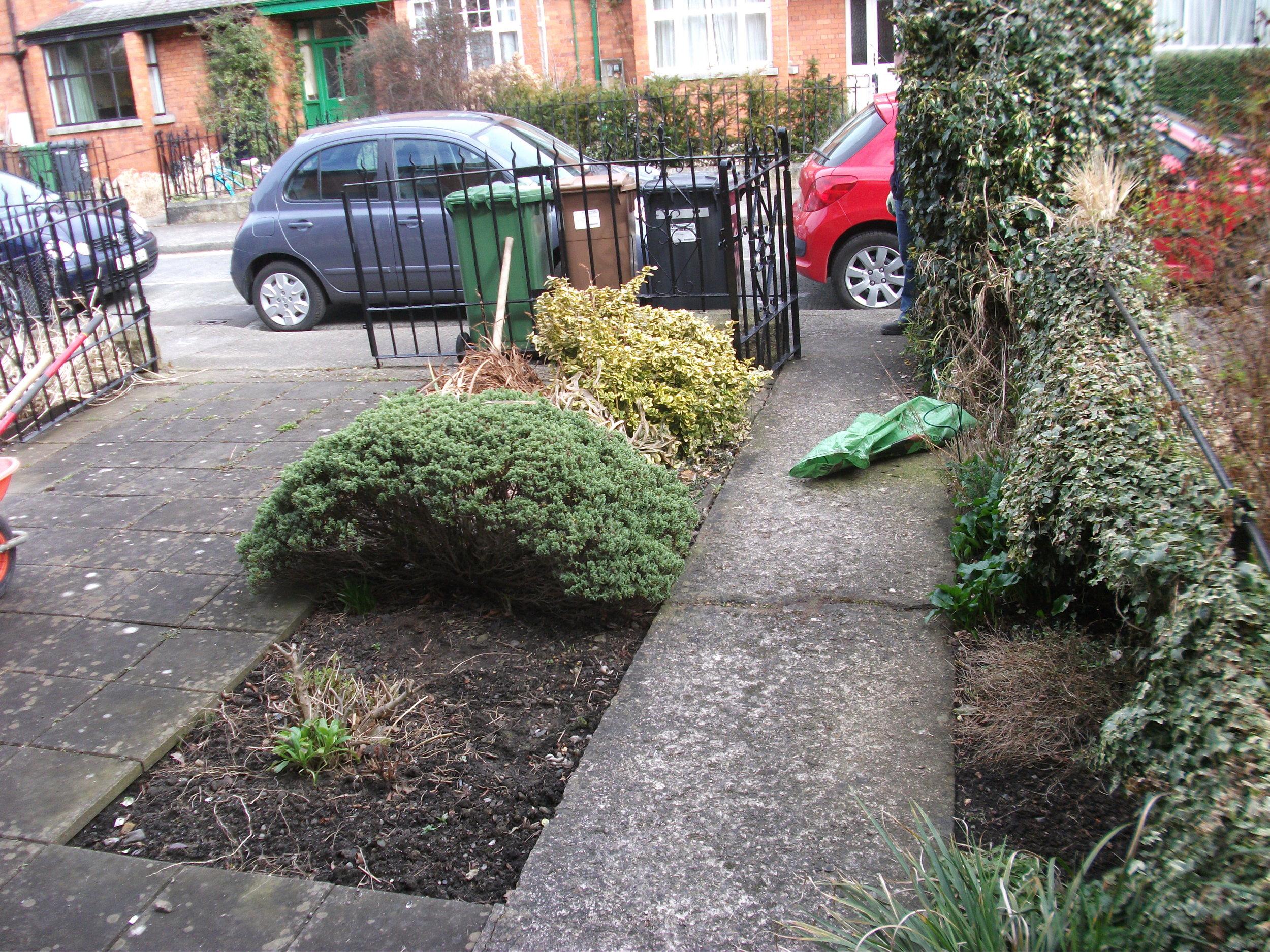 front garden before landscaping.JPG
