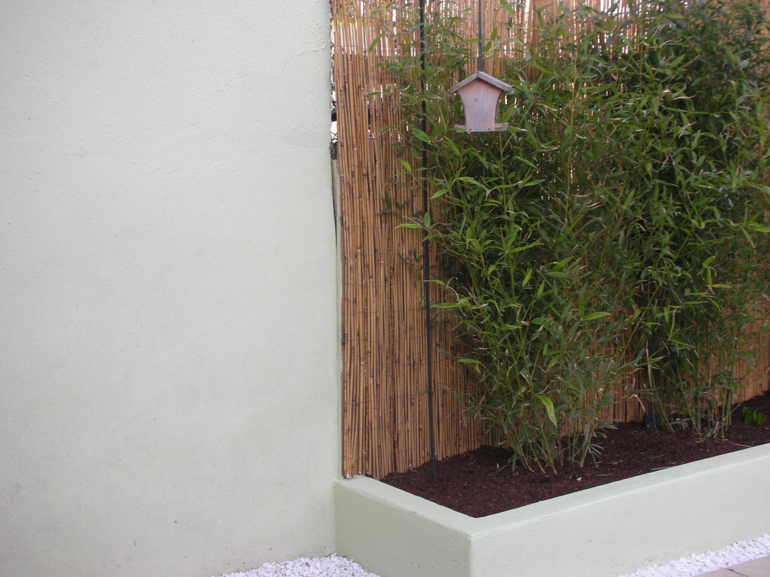 contemporary back Garden.JPG