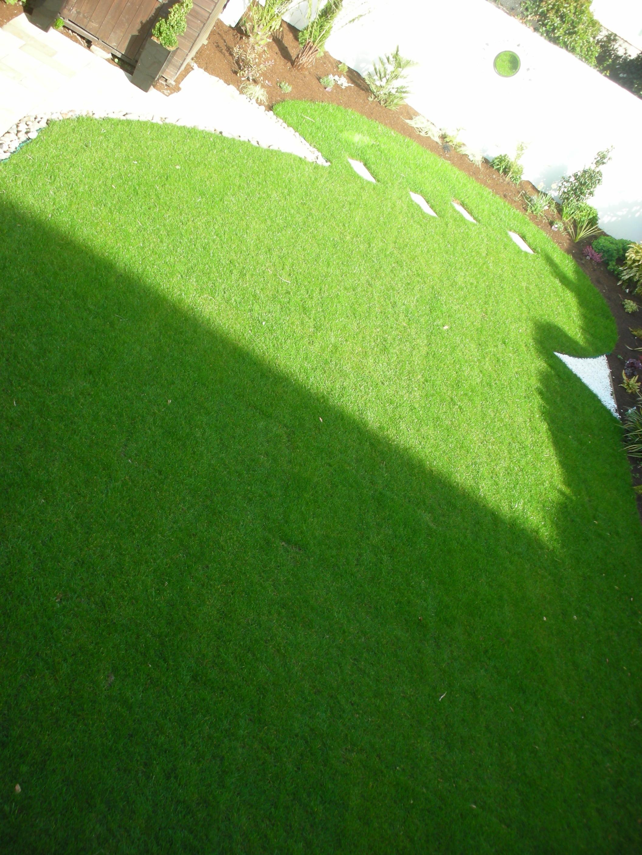 back Garden .JPG
