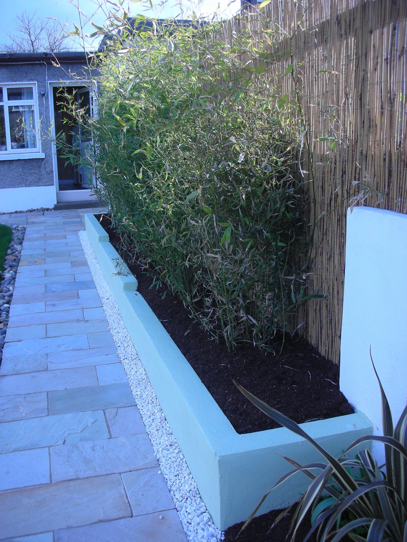 back garden bamboo mint sandstone.JPG