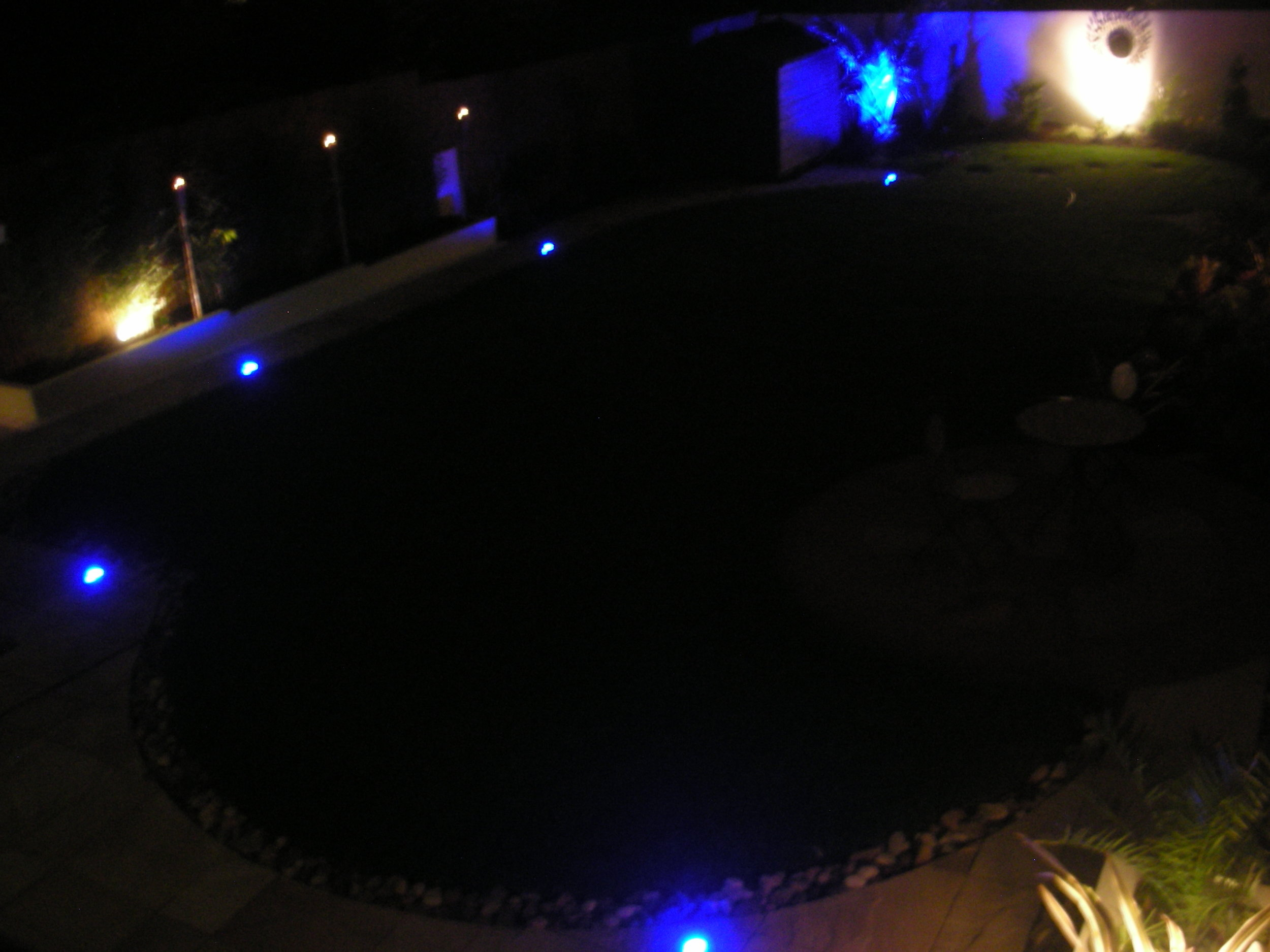 Back Garden Night Shot.JPG