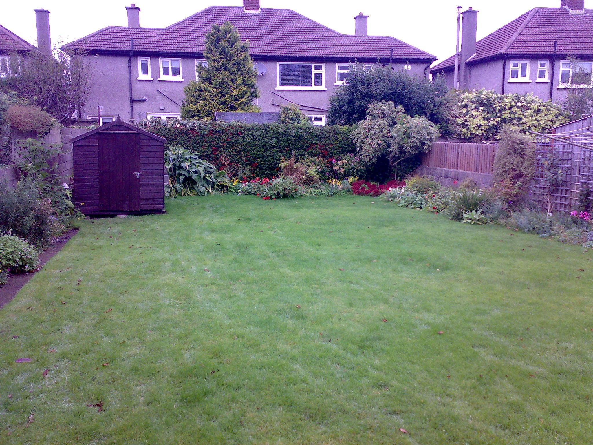 Back garden before .jpg