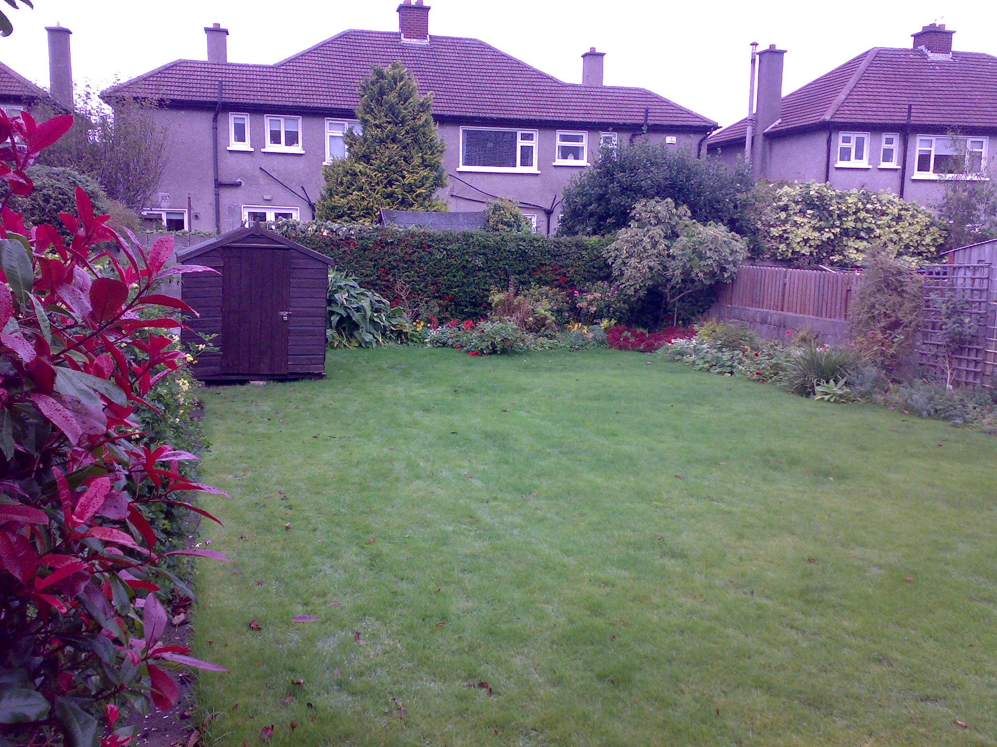 back Garden dublin .jpg