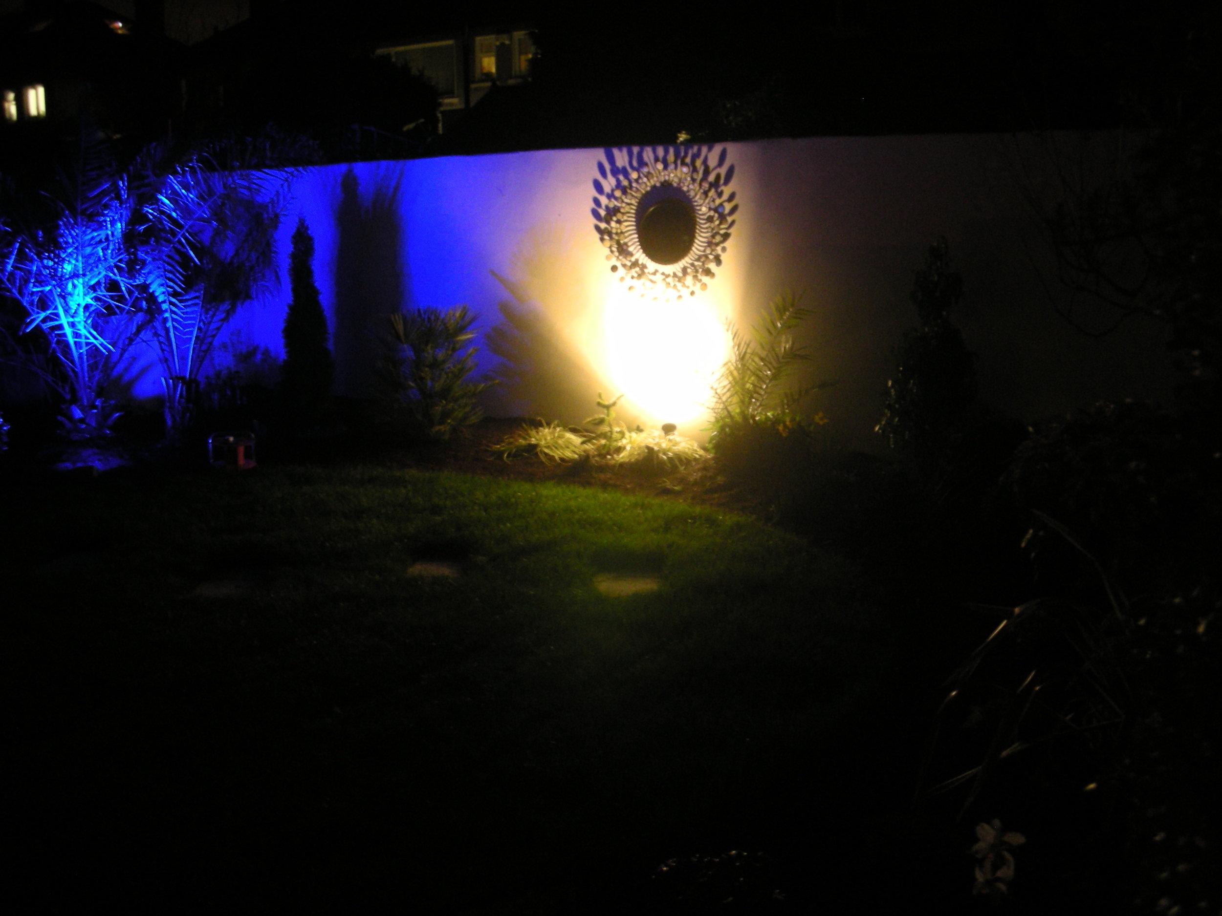 Back Garden mirror .JPG