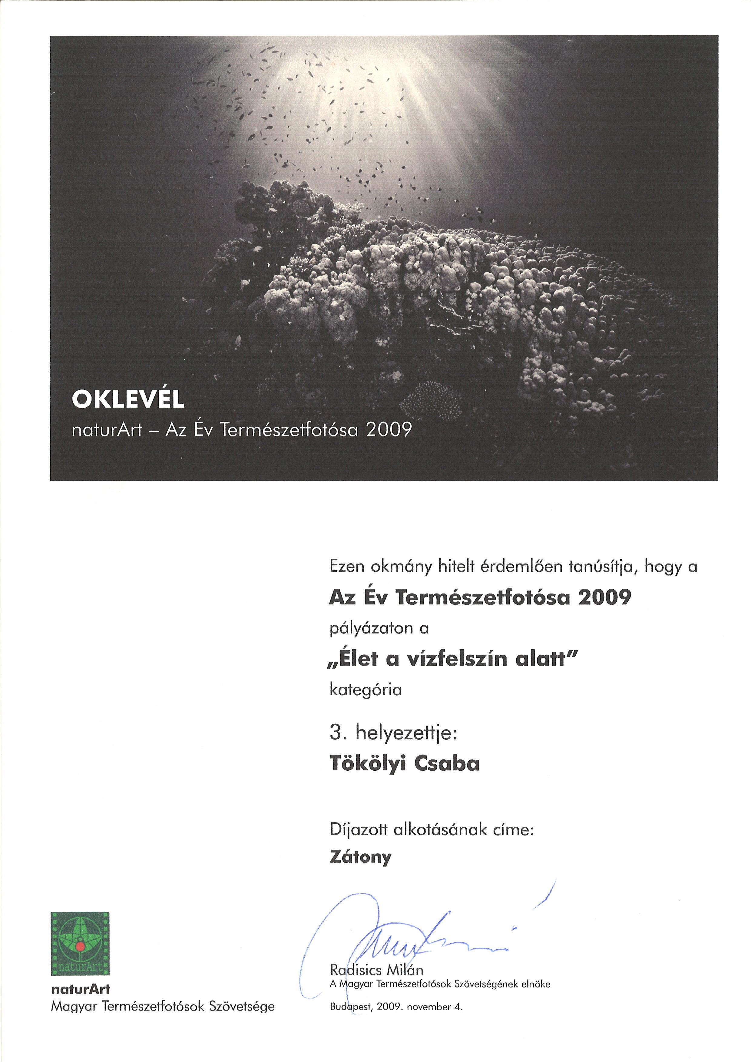 2009_0222_019.jpg
