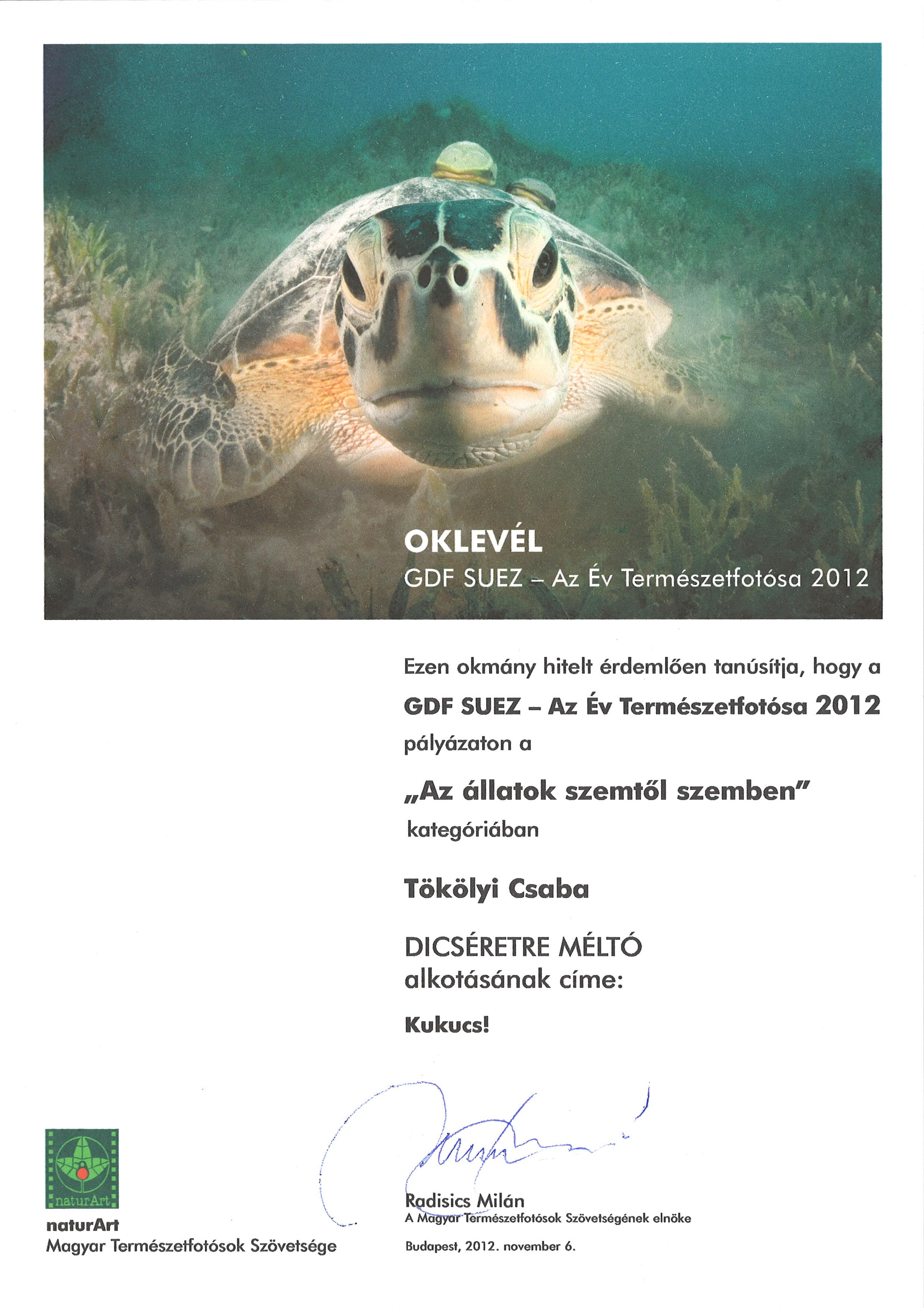 2012_0222_023.jpg