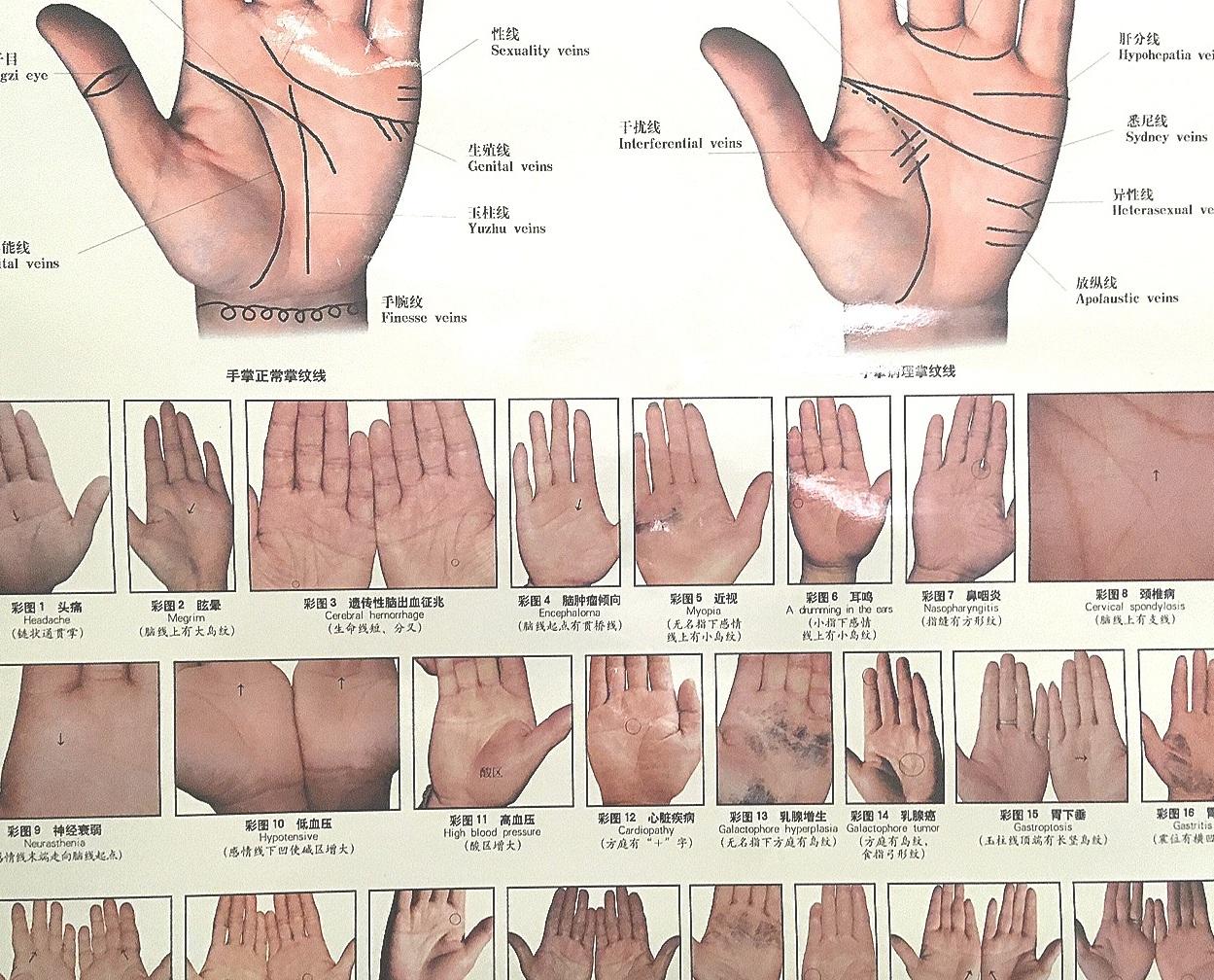 hands hands cubes cubes.png
