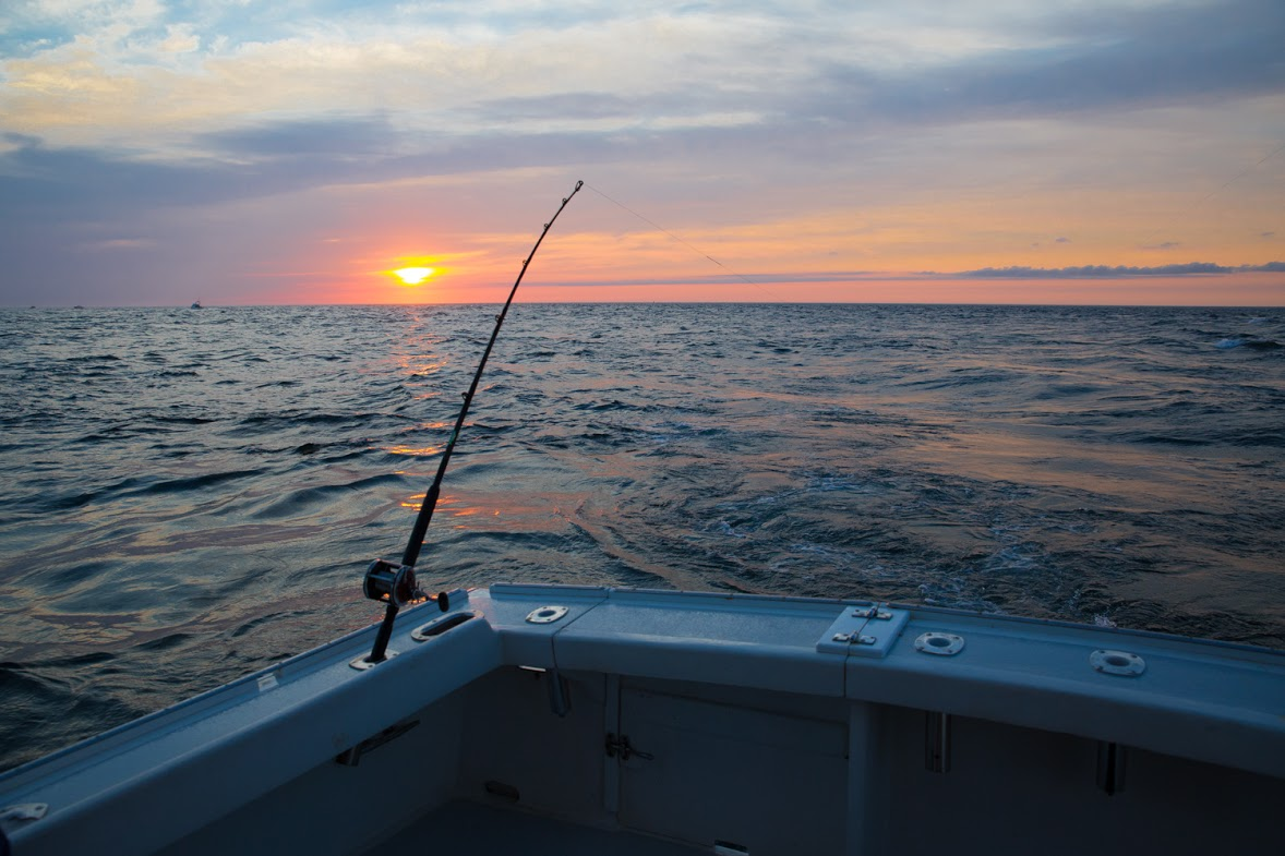 Cape Cod's Premier charter fishing - SUMMER 2019