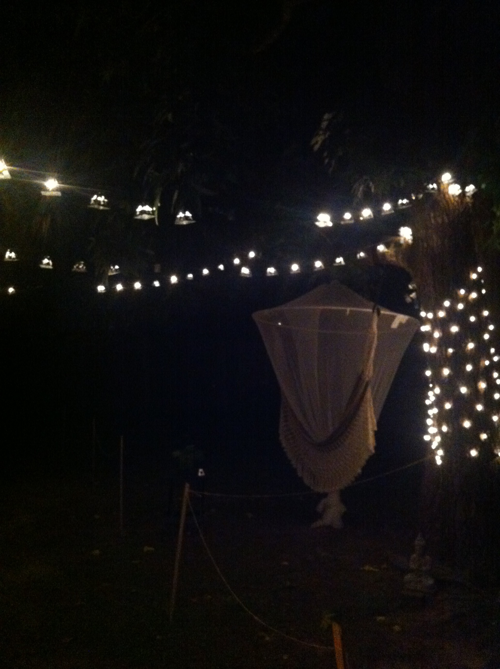 backyard magic
