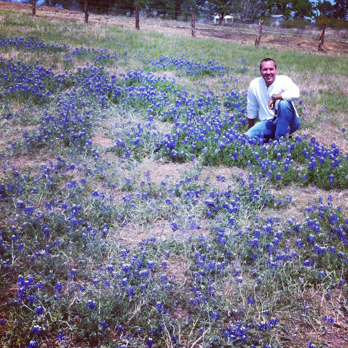his first time seeing bluebonnets, my california guy