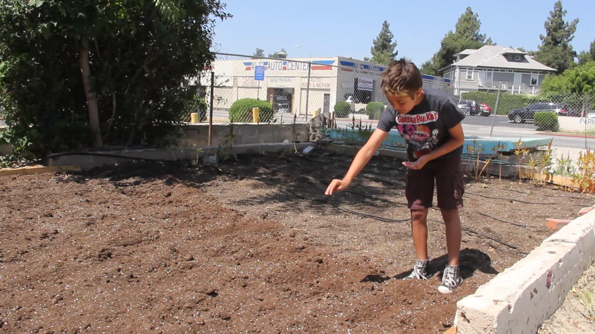 Planting at Side Street Projects, Pasadena, California July 2014