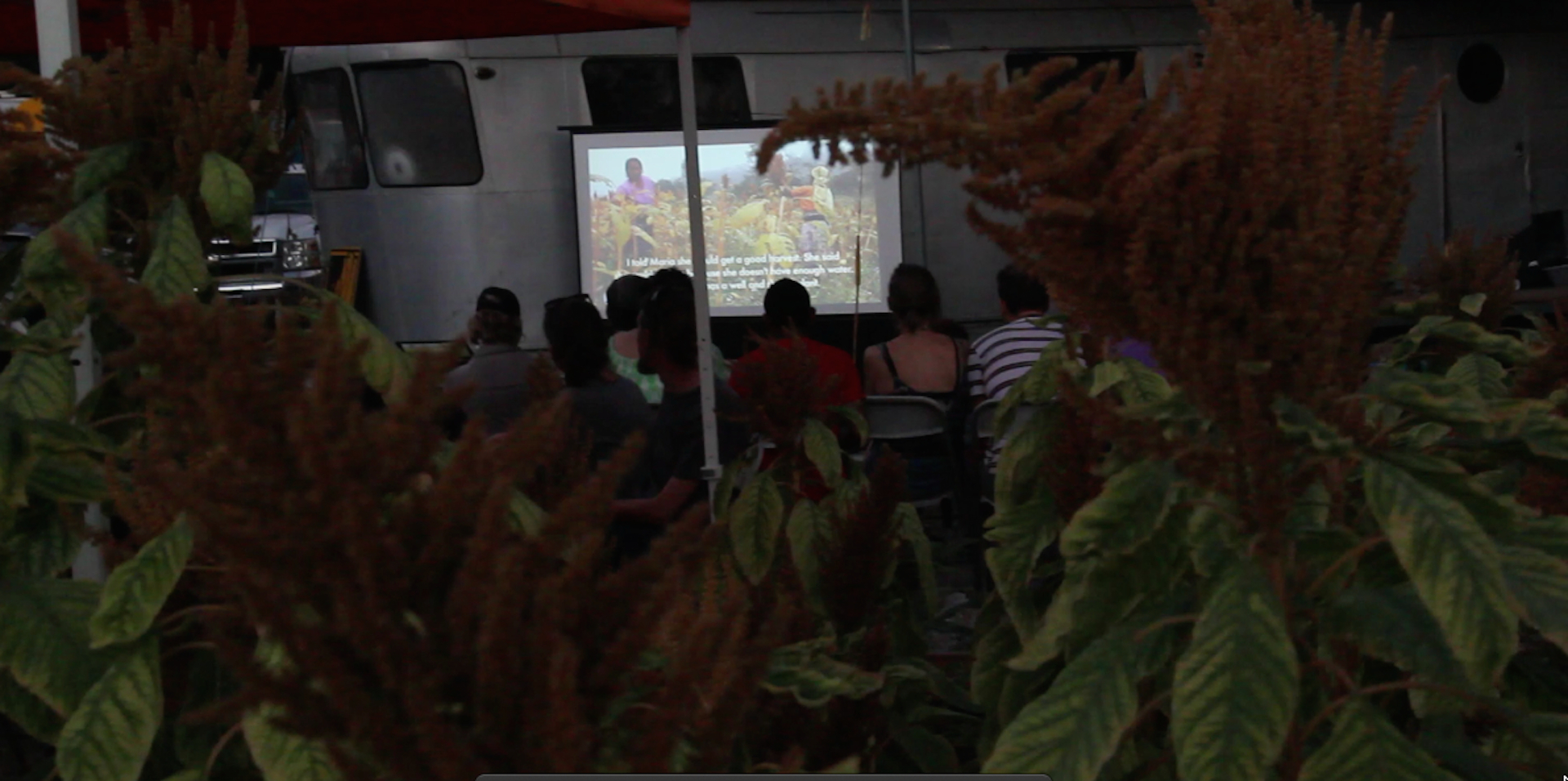 Film screening at Side Street Projects, 2014