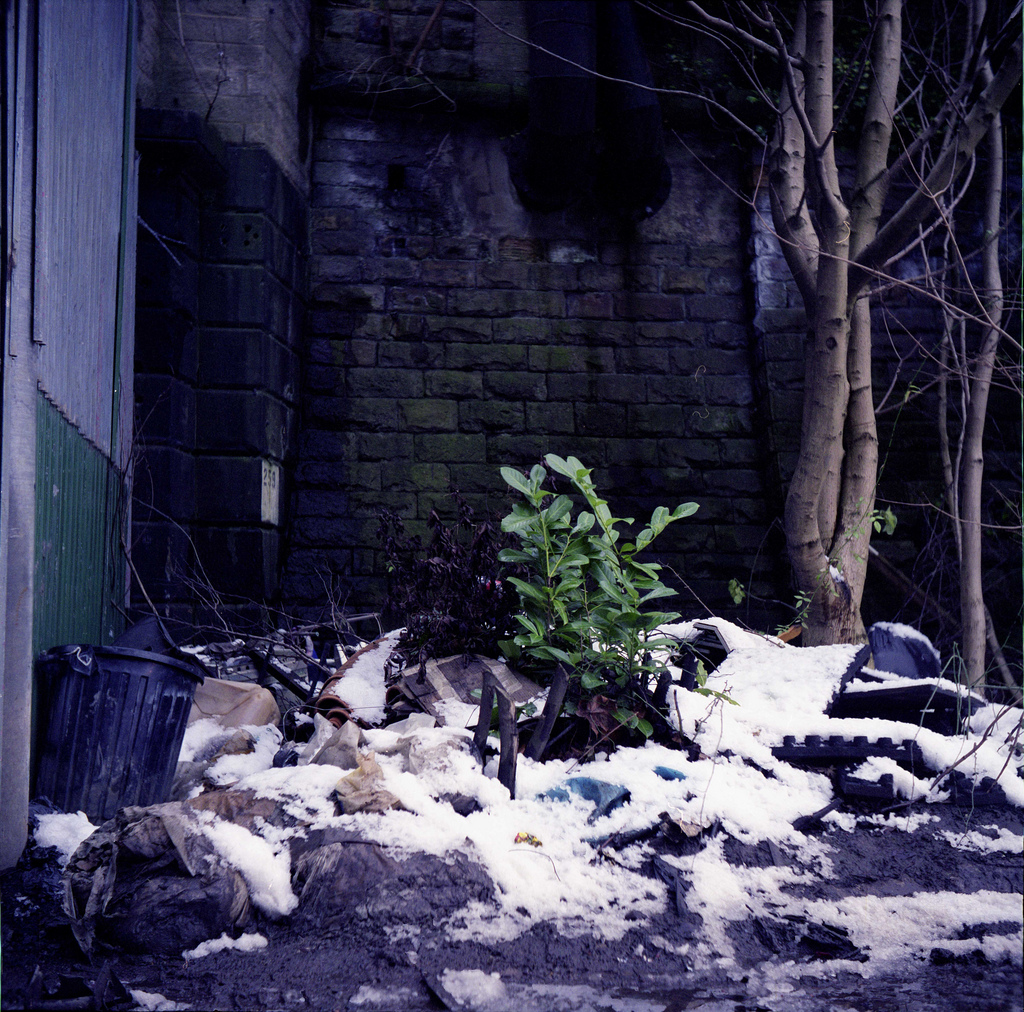 Shot on a Yashicaflex-C. Leeds, 2008.