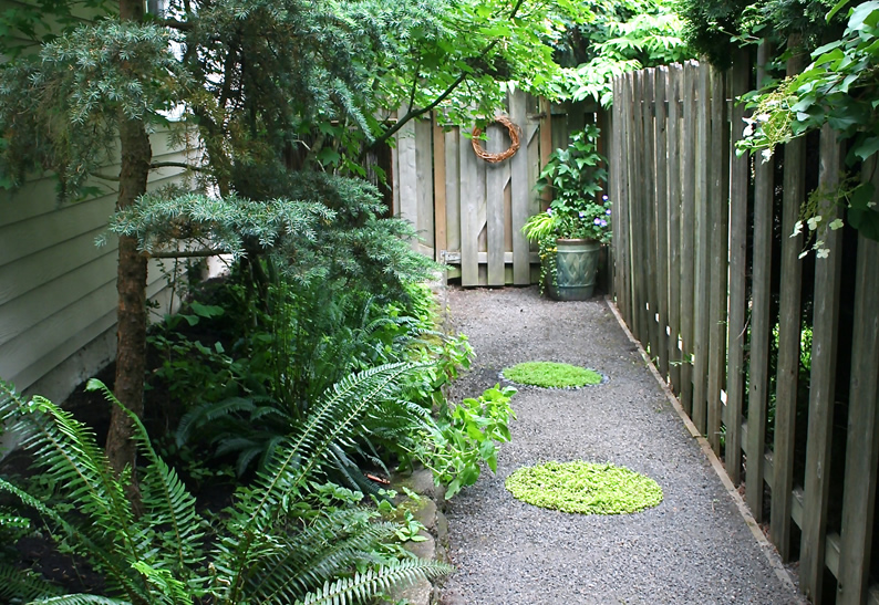 side yard steps3.jpg