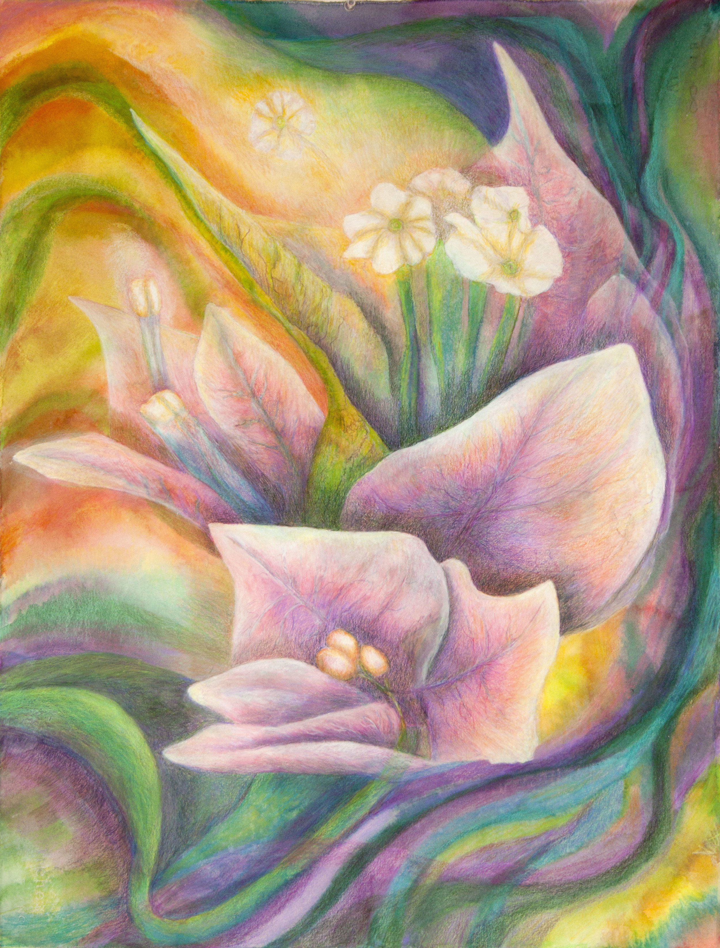 Radient Blossom