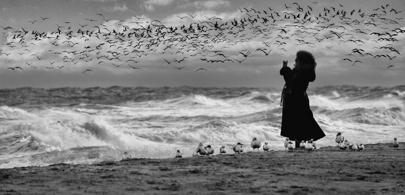 Winter's Rough Sea