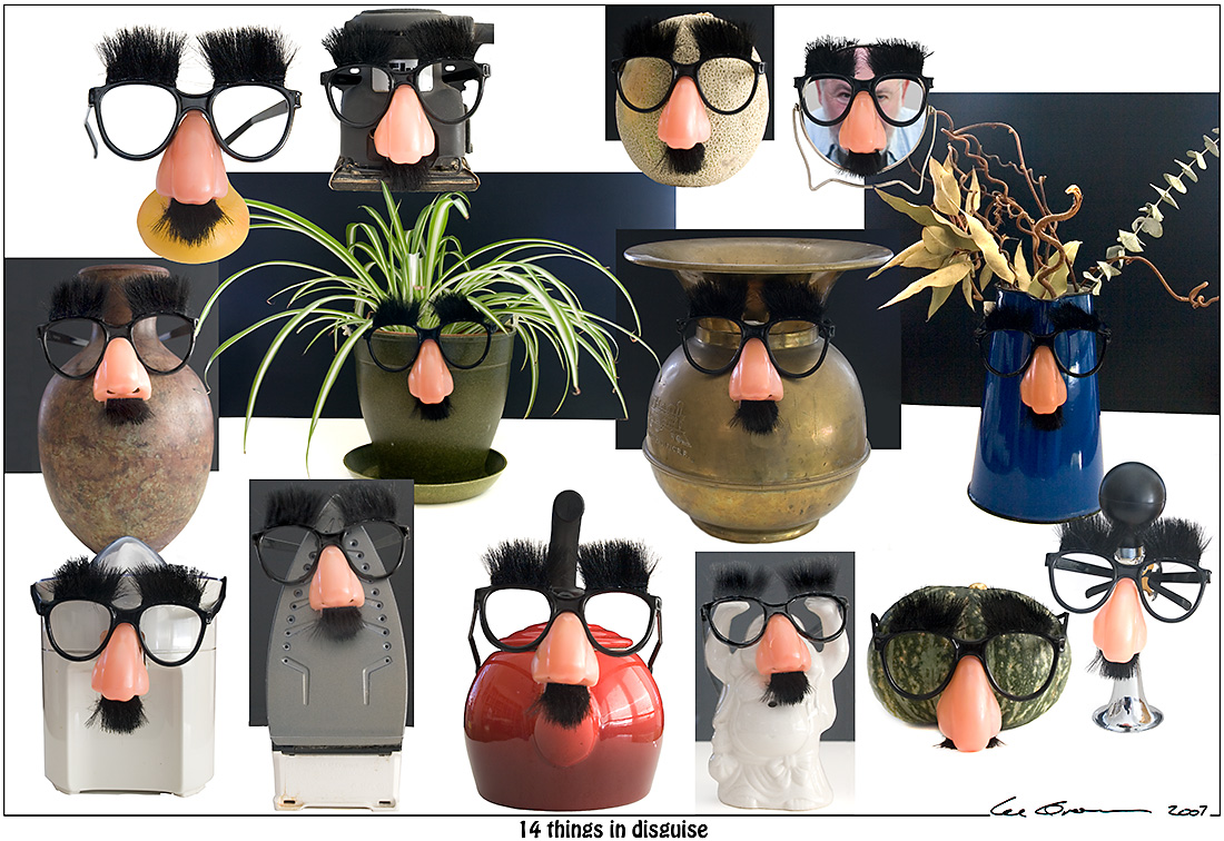 14-things-in-disguise-signed.jpg