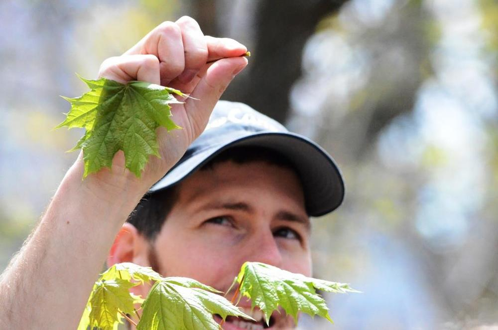 Tree Identification Walk in Central Park with Dr. Donald McClelland - April 26