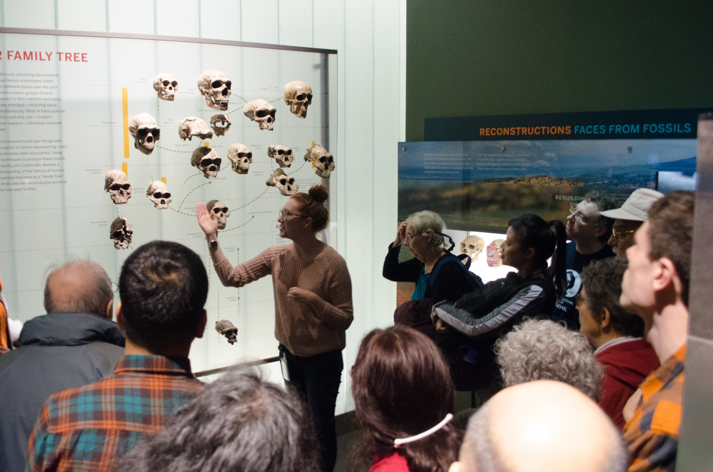 Human Origins Hall Tour at AMNH with anthropologist Anna Ragni - January 29