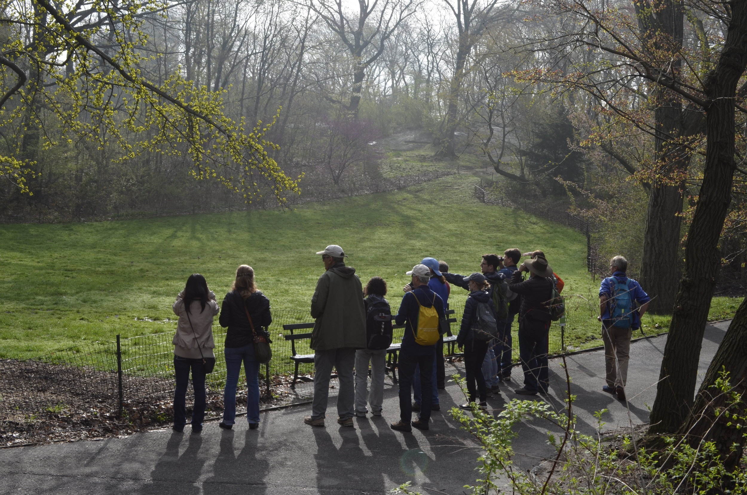 Spring Birding in Central Park with Spencer Galen - April 28