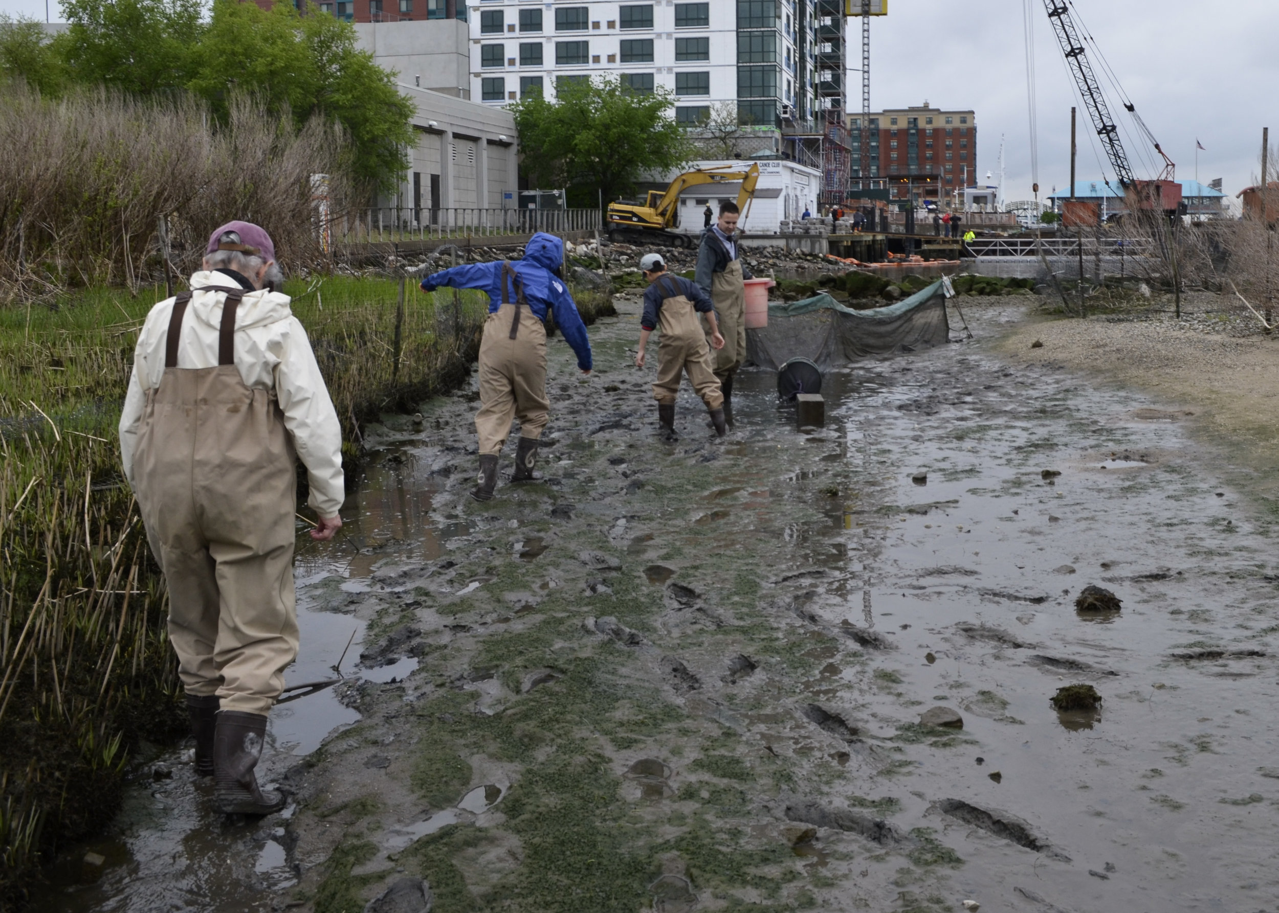 Monitoring the American Eel with Jason Muller - May 12
