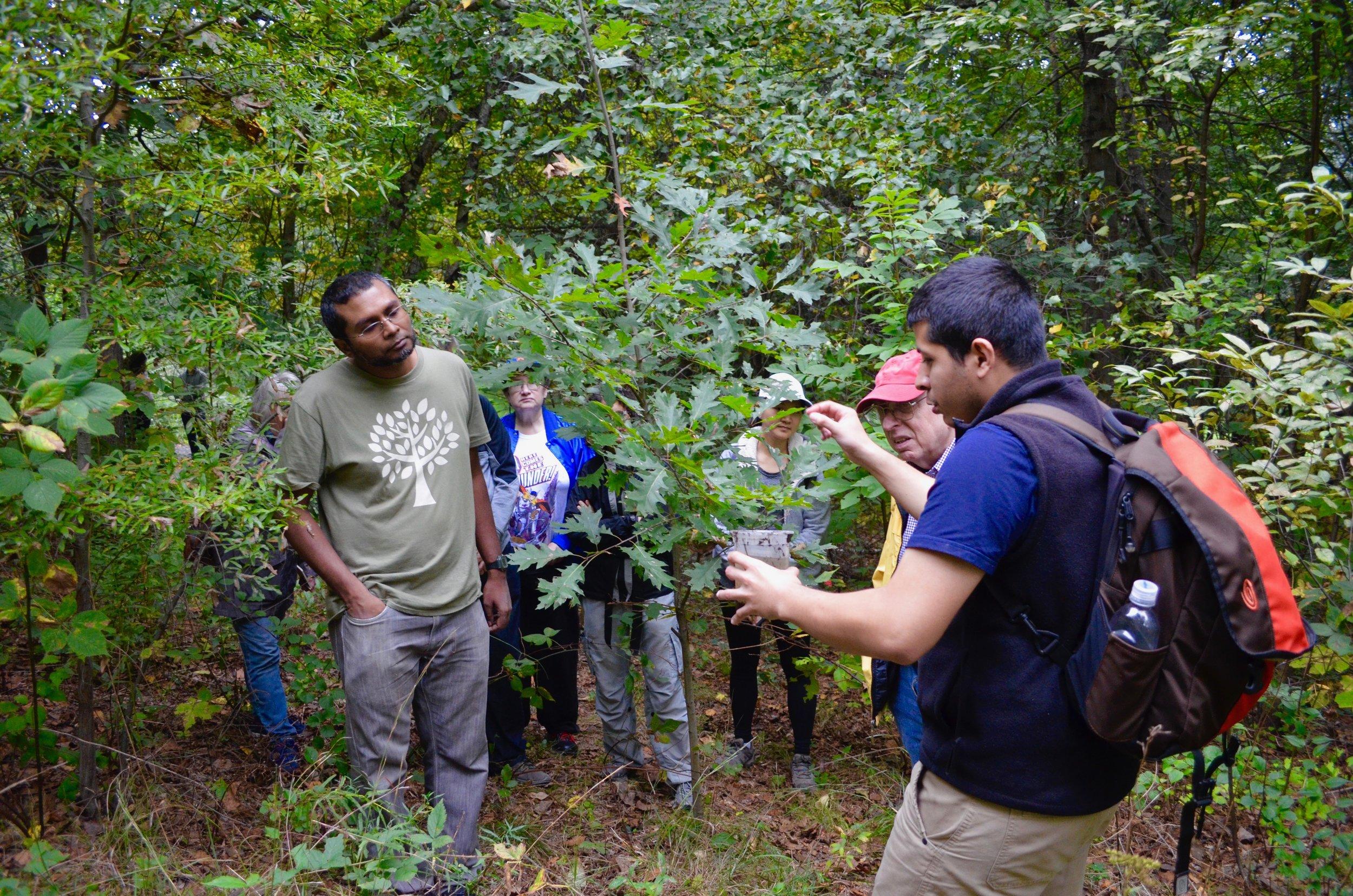 Ecology and Biological Inventory of Van Cortlandt Park - October 6