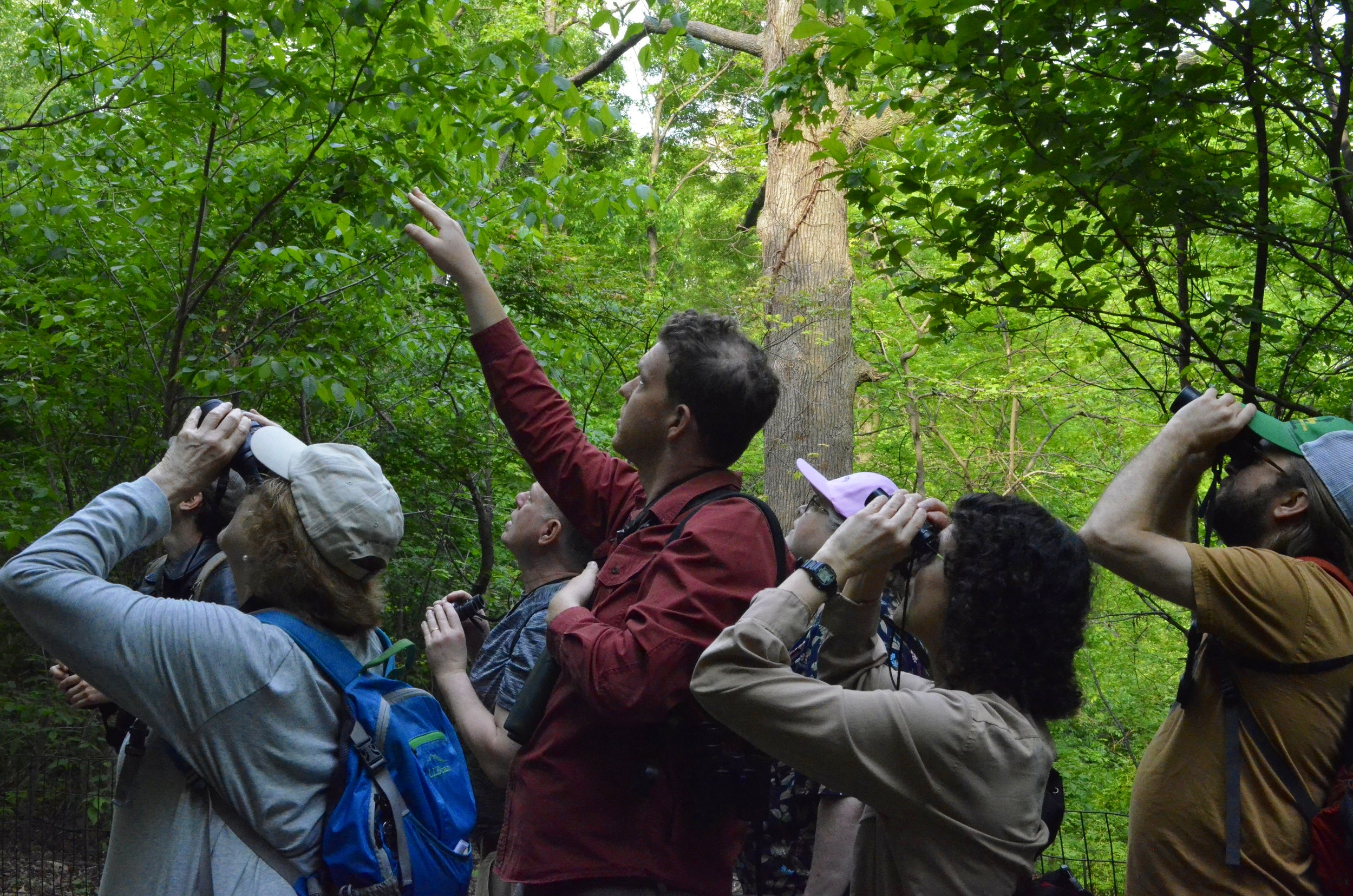 May 19 - Spring Birding with Luke Musher