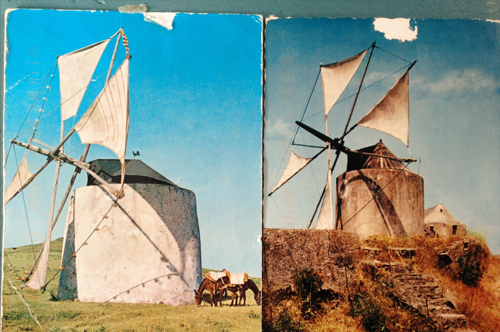 Two of the sent postcards from Switzerland to Mexico, 2014.  Many of the postcards sent to BSH were, in fact, windmills.