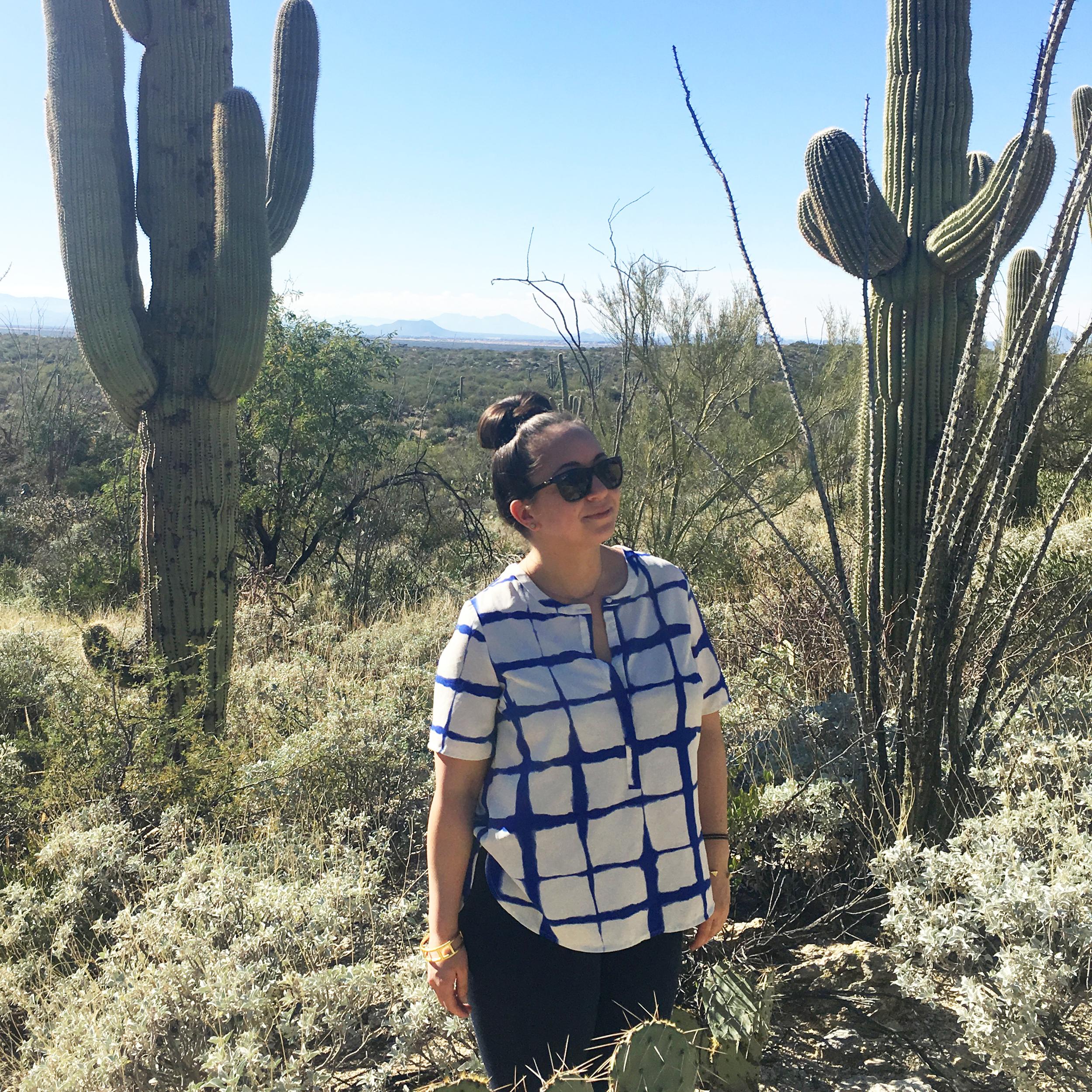 Marveling the monstrous cacti in Saguaro National Park, Tucson AZ