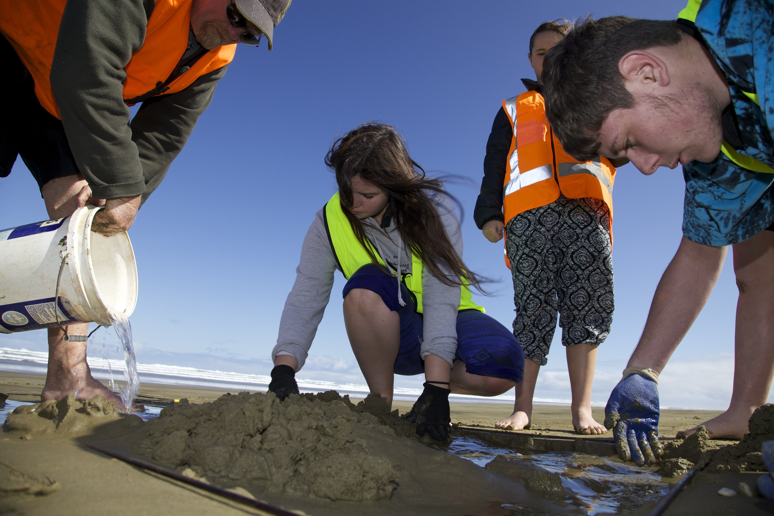 Kaitaia College students comparing numbers of toheroa on Ninety Mile beach and comparing numbers with a survey conduced in 1939 to understand the change over time of toheroa populations.