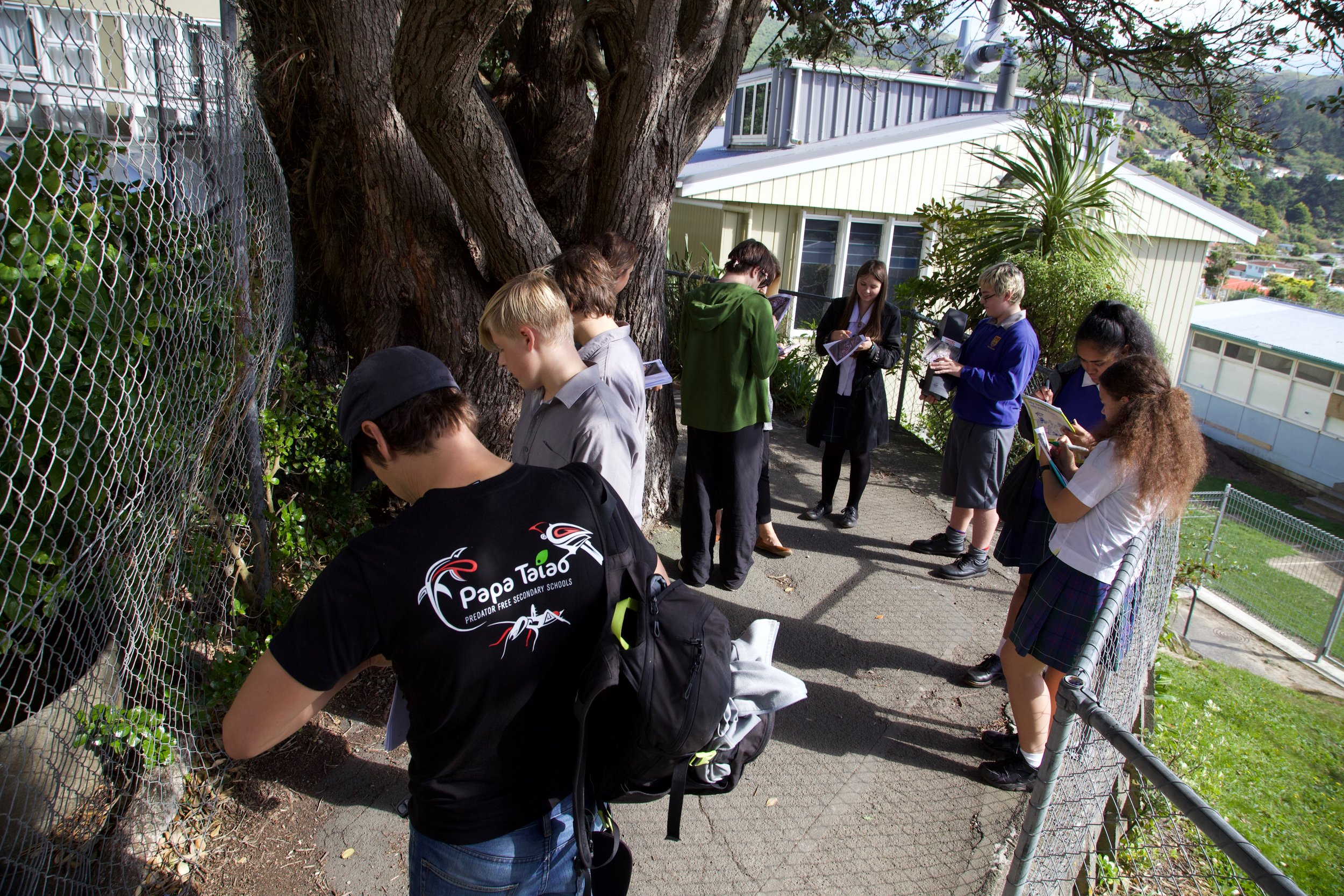 Tawa High School students doing a species monitoring in their school.