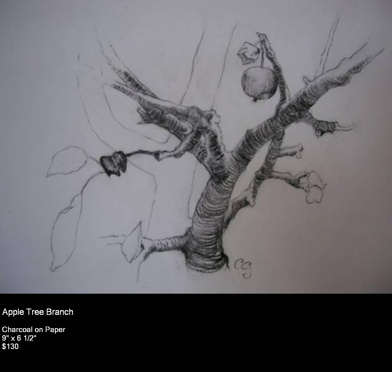 12 Apple Branch Mid-ss.jpg