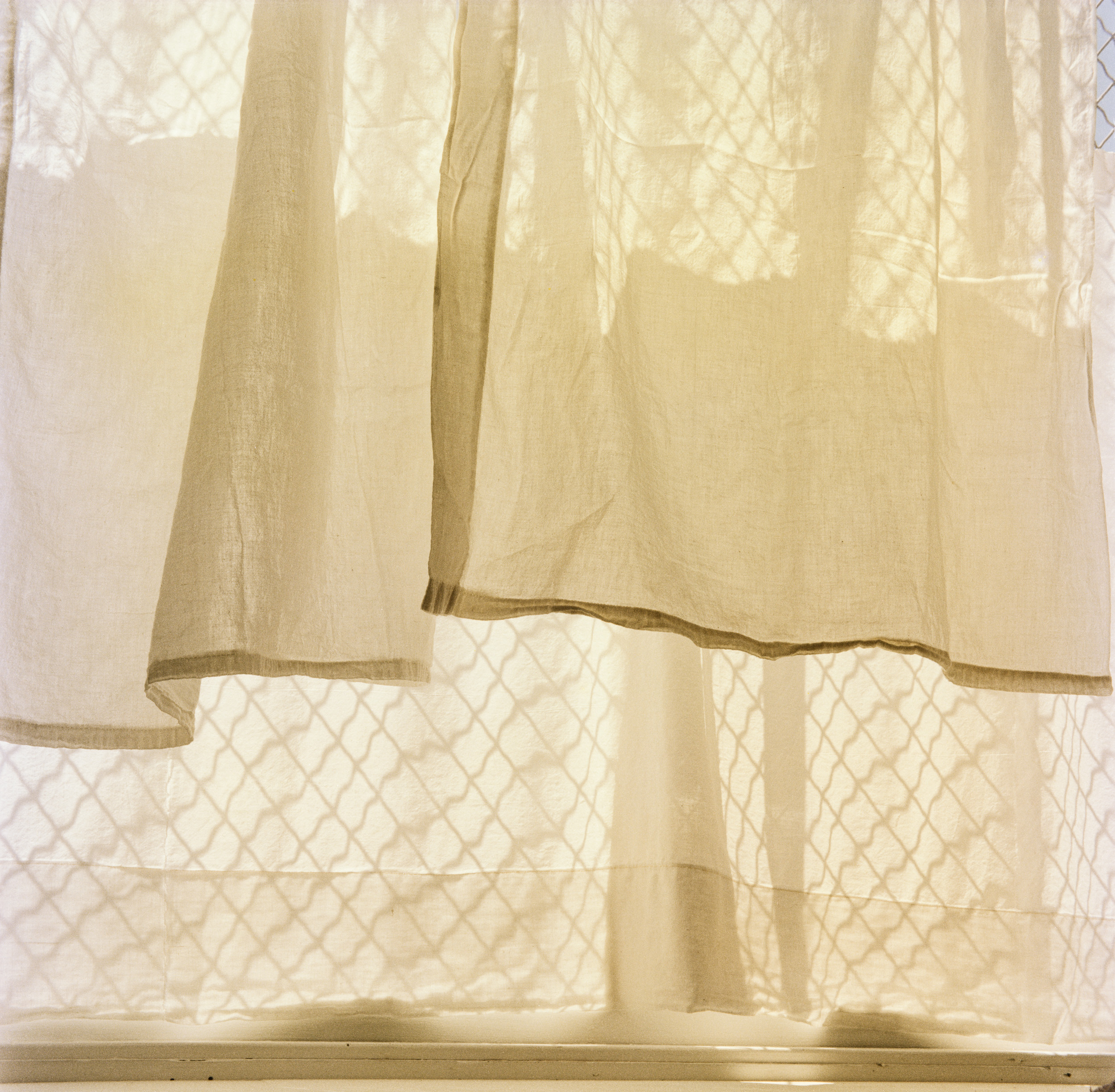 Adela's Window