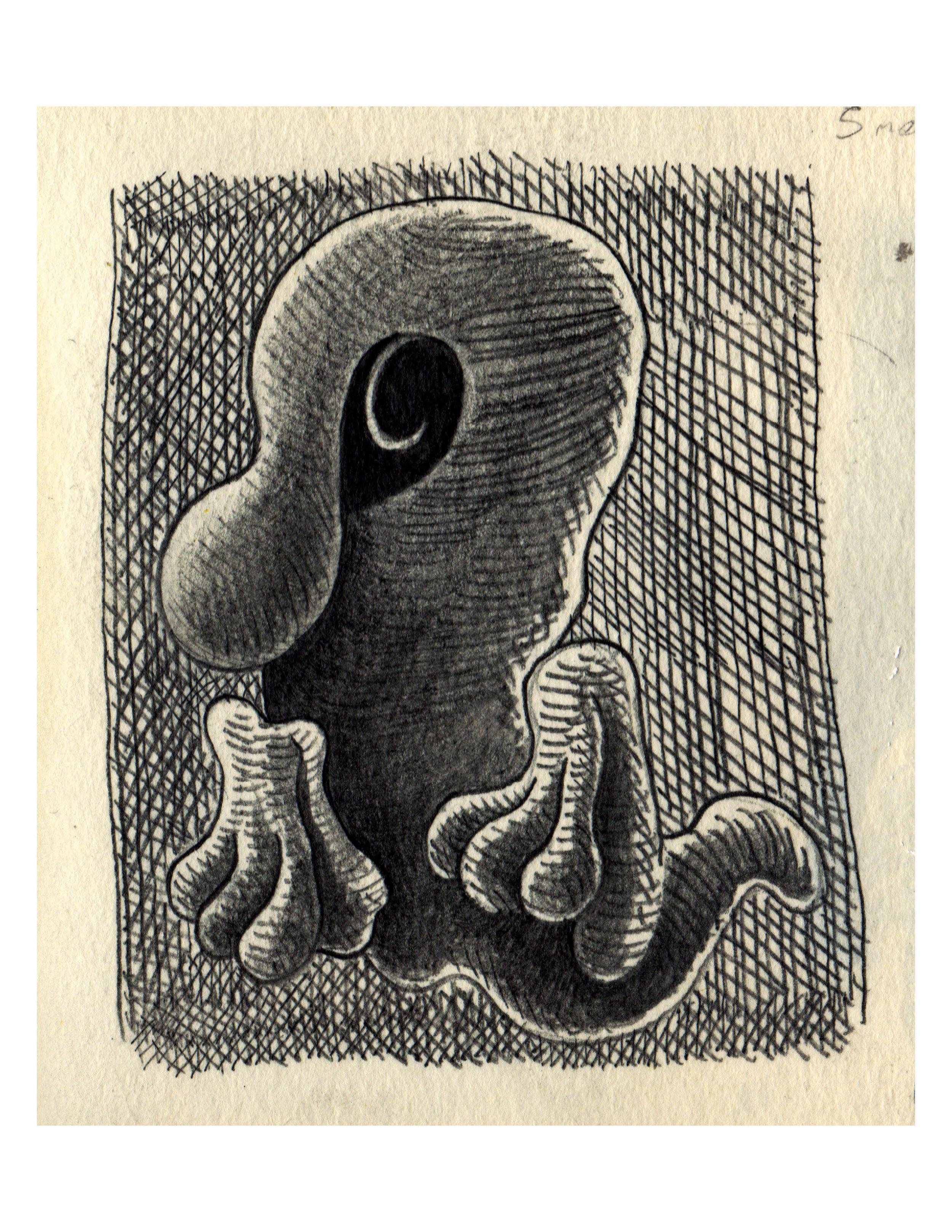 11. Borgesian Dreamtiger.jpg