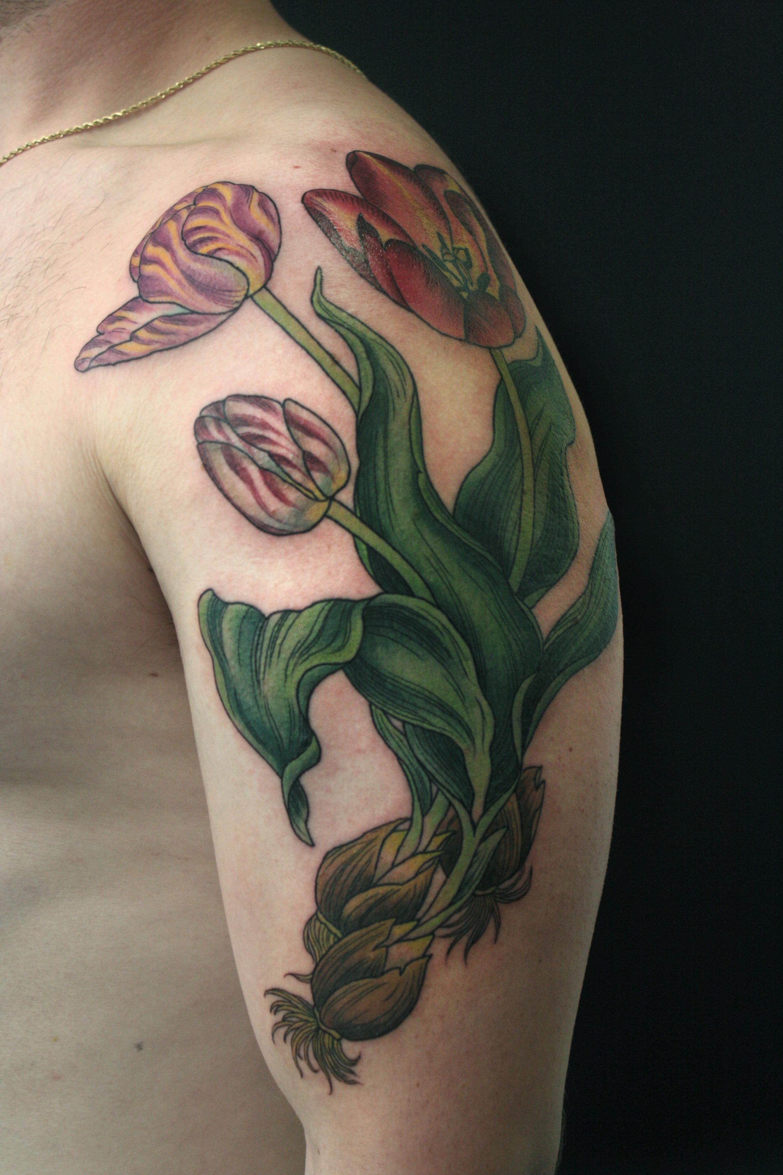 Tulip Half Sleeve.jpg