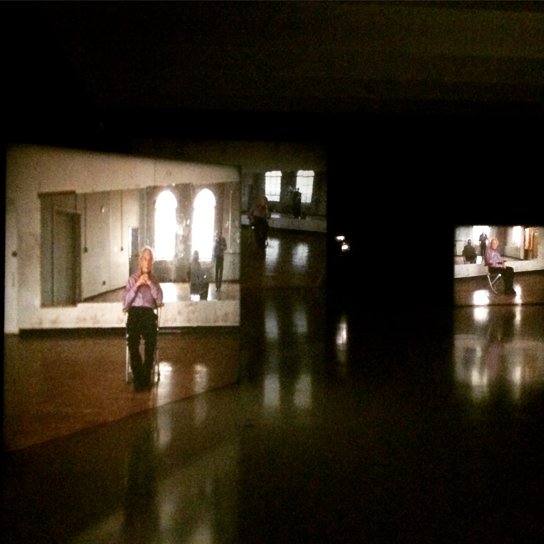 """Stillness,"" Tacita Dean's video and sound installation at the Walker Arts Center, Minneapolis (Image: Brian Harnetty)"