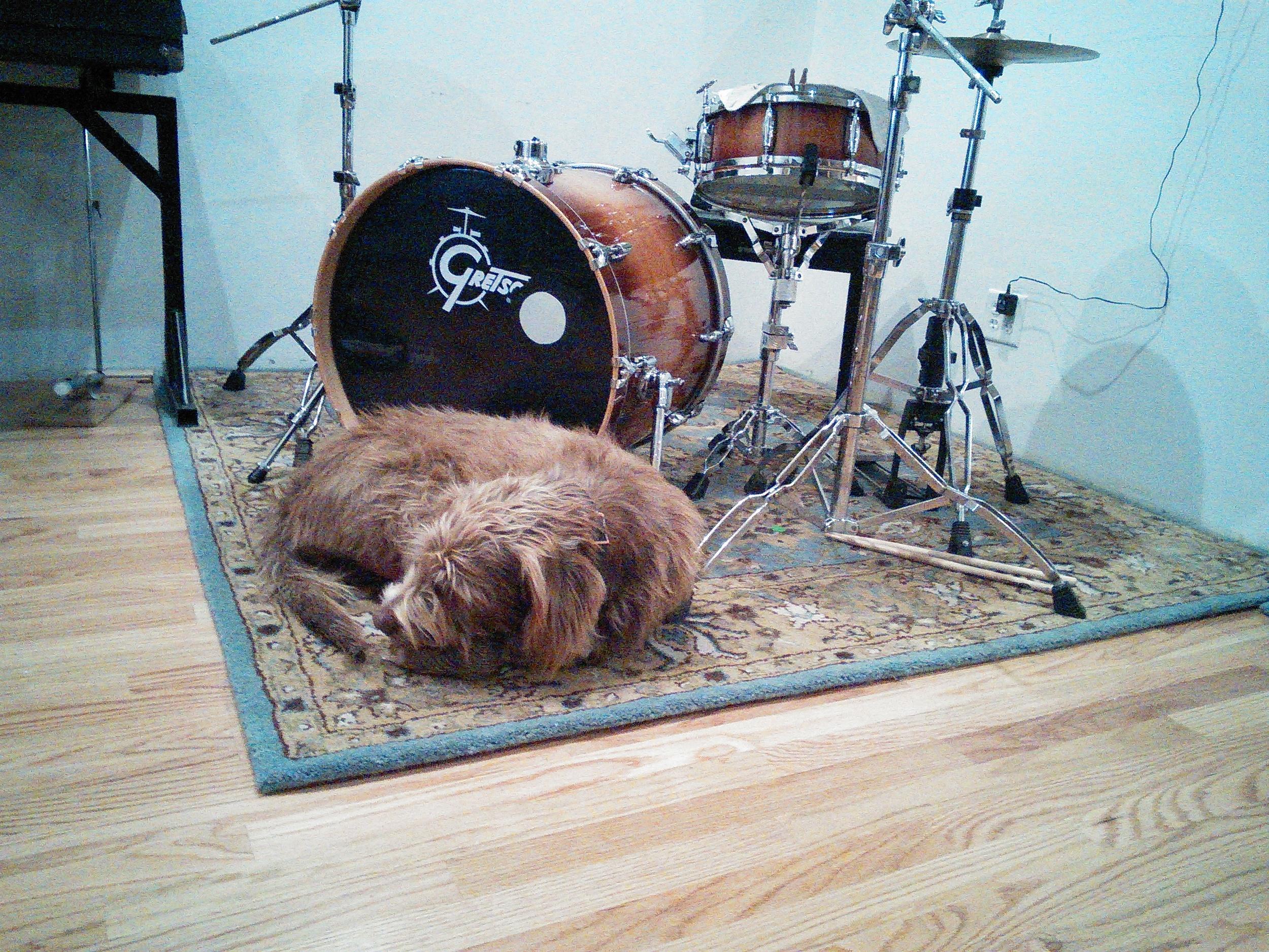 charlie drums.jpg