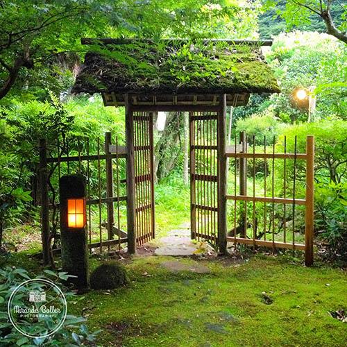 JAPAN_0656.jpg