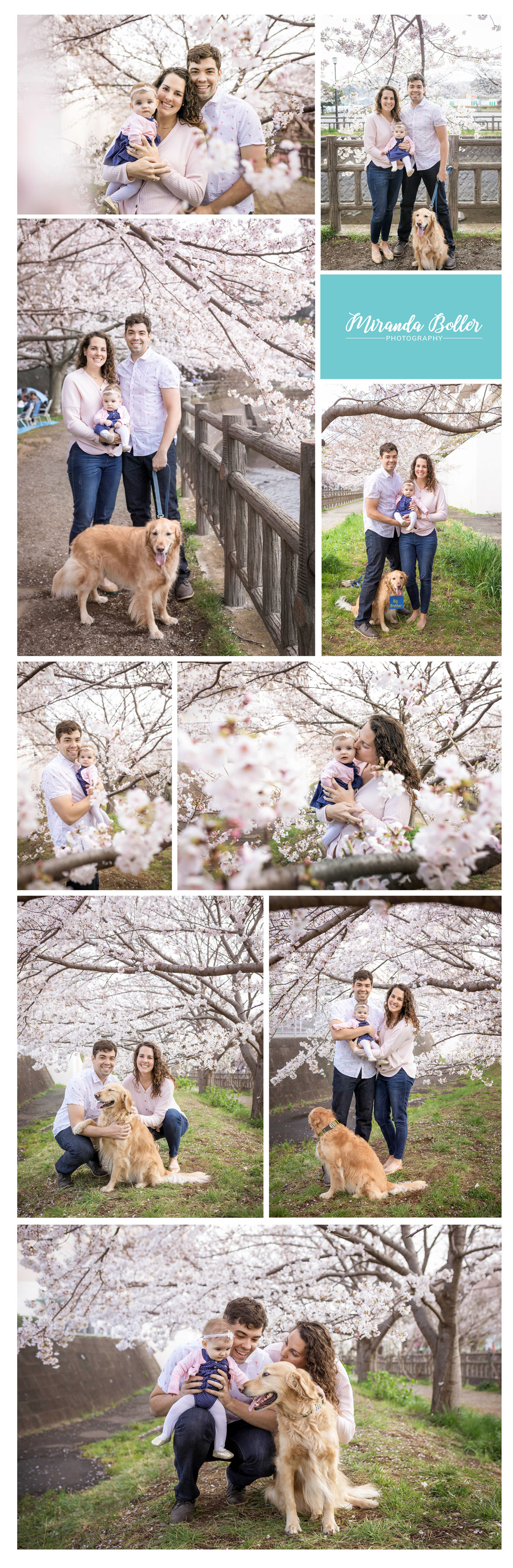 CherryBlossomJapan03