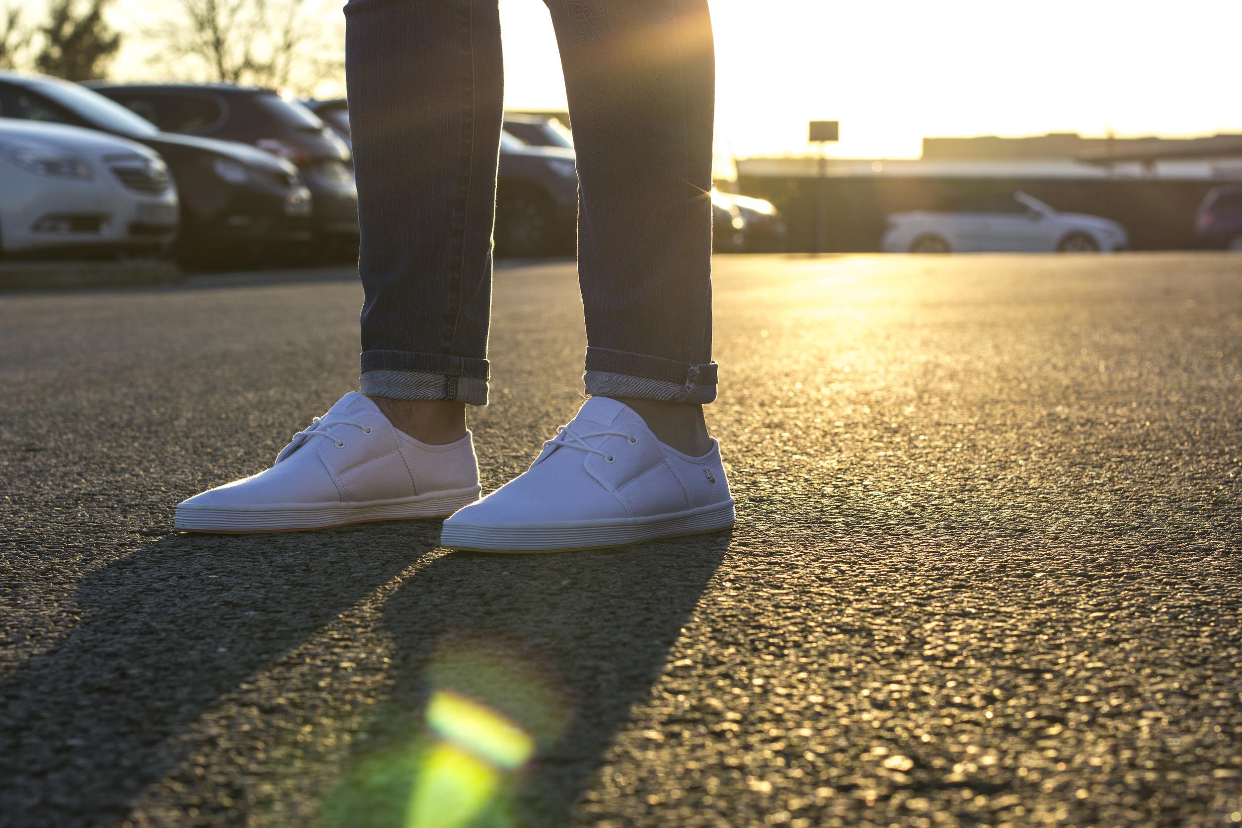 Spam 2 Canvas White Sunset 5.jpg